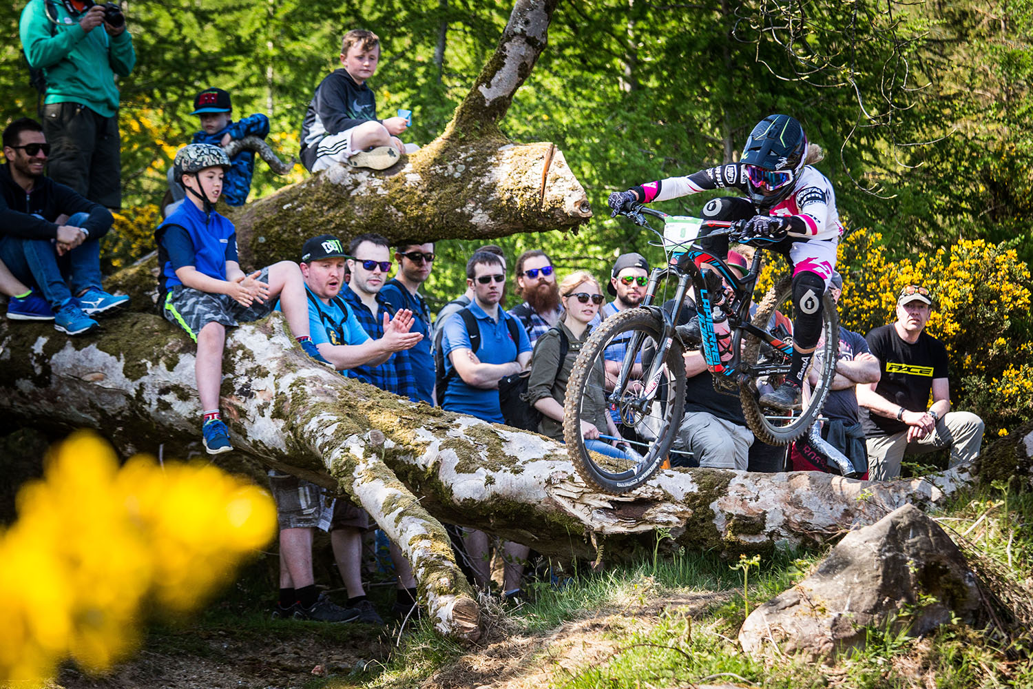 Log jump at the top of stage 5. Photo: Lapierre- Jeremy Reuiller