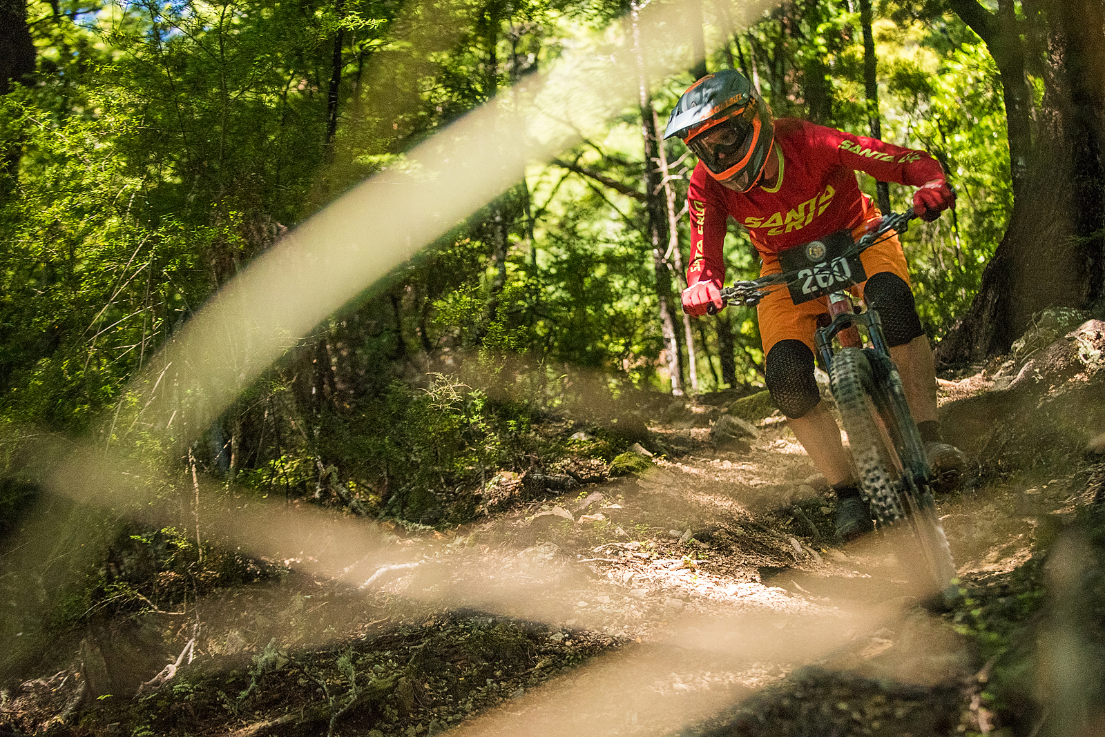 Trails were dry and in mint condition, as you would expect! Image: Digby Shaw