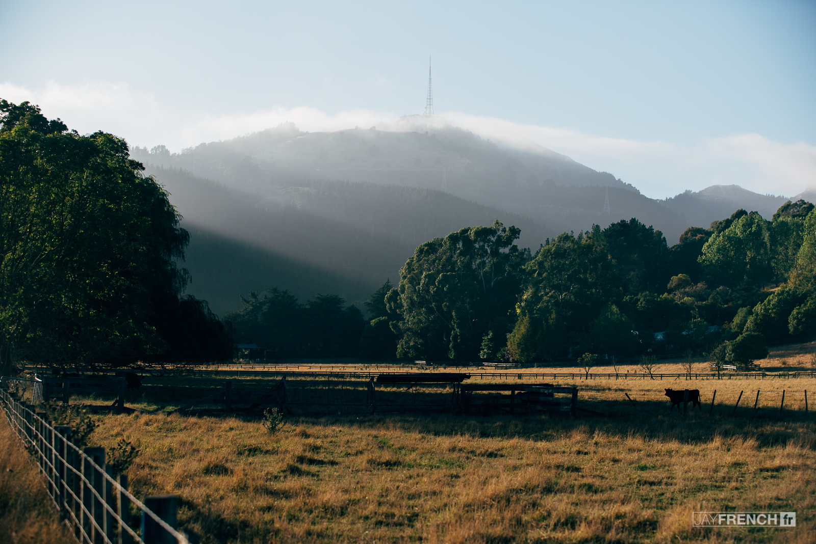 Good morning Christchurch
