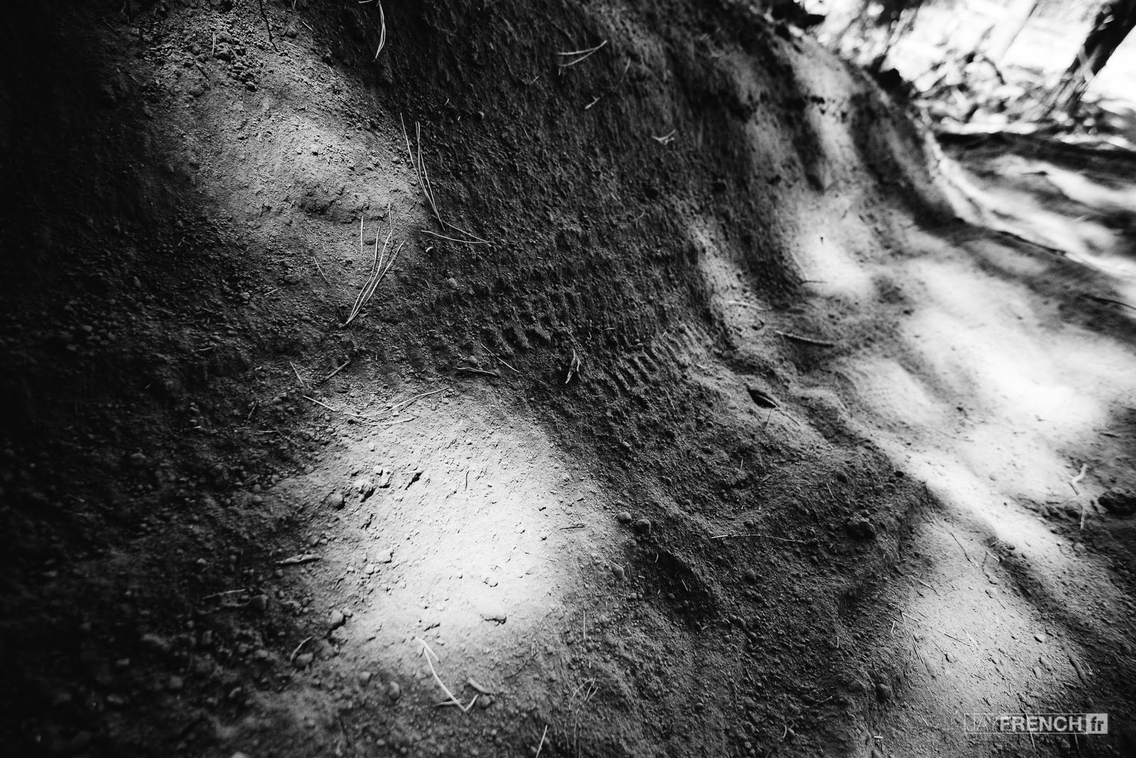 Some rare tracks in the dust
