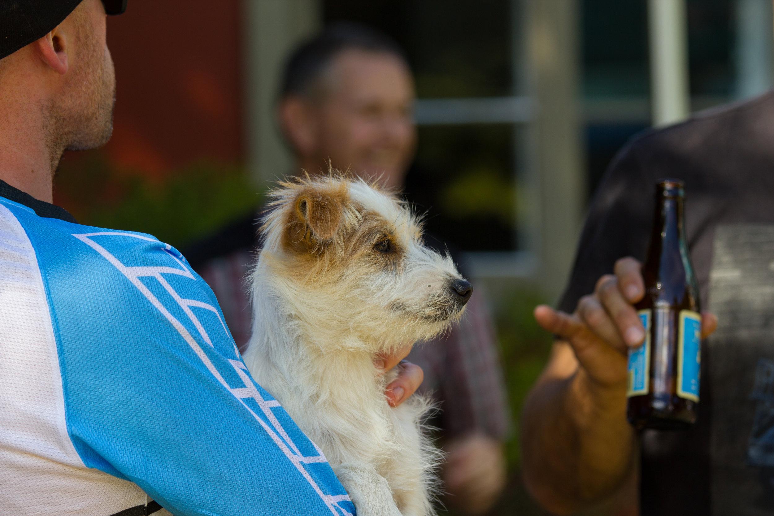 Every race needs a cute dog
