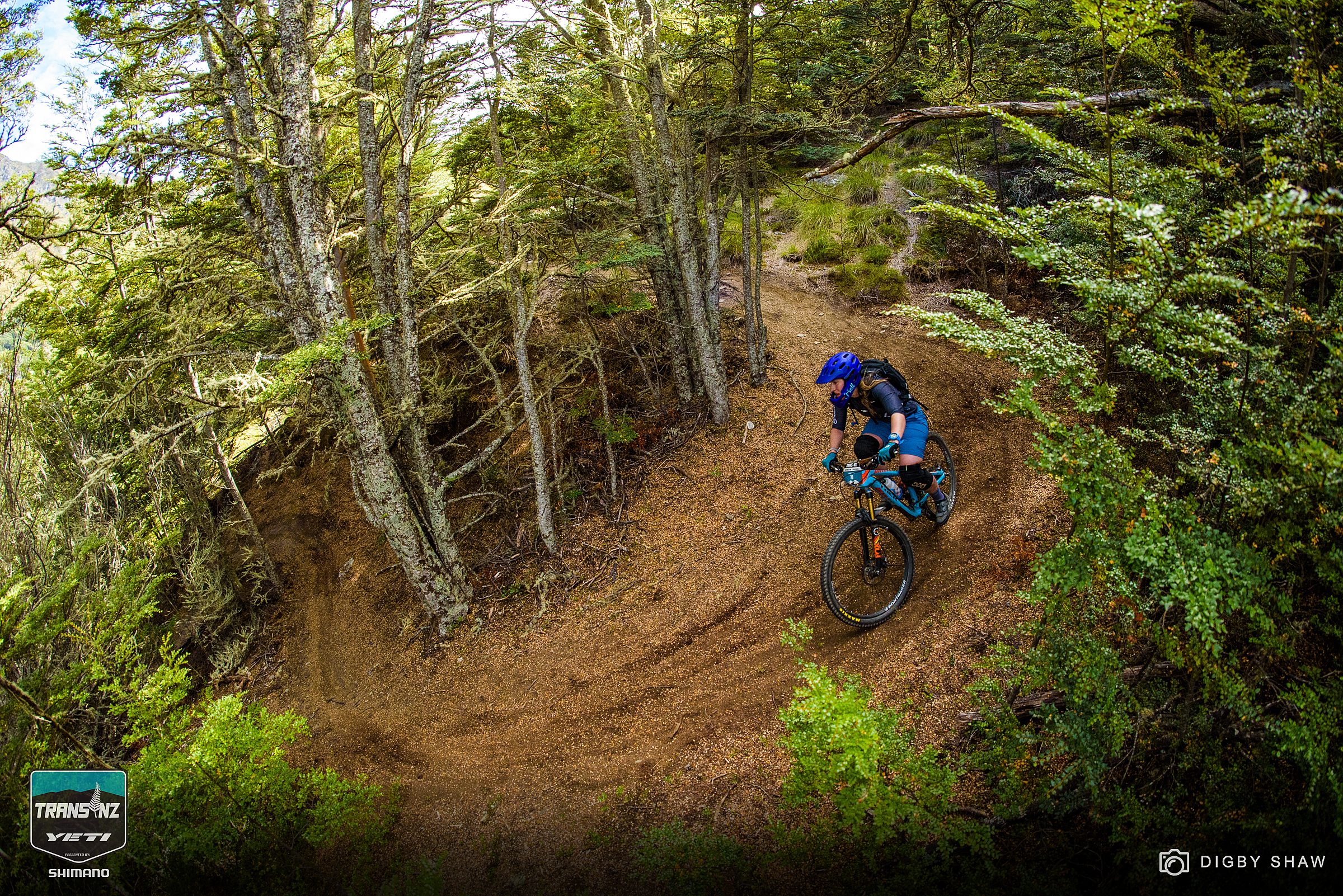 More stage two loamy goodness