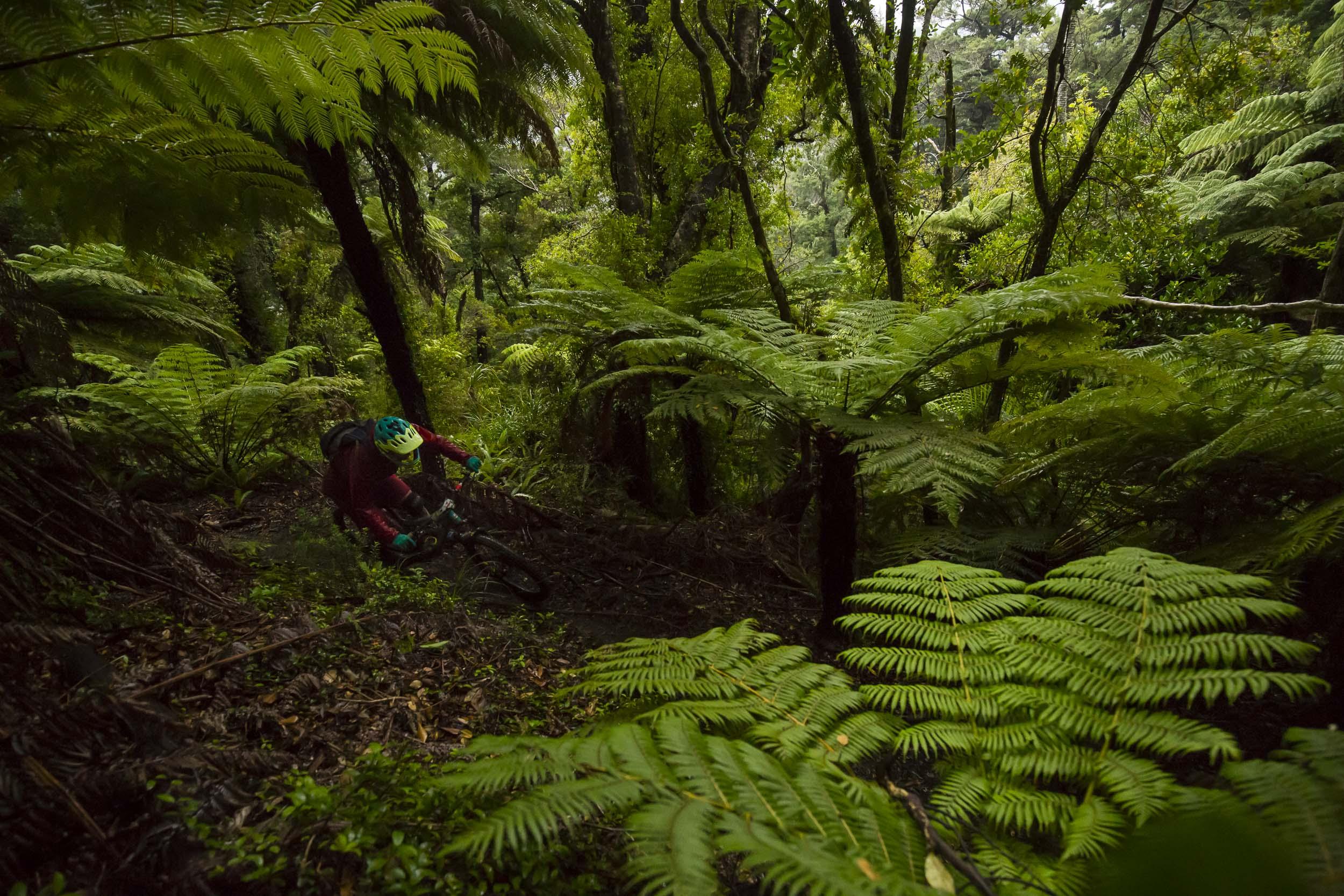 NK_NZ_Enduro_Day2-9.jpg
