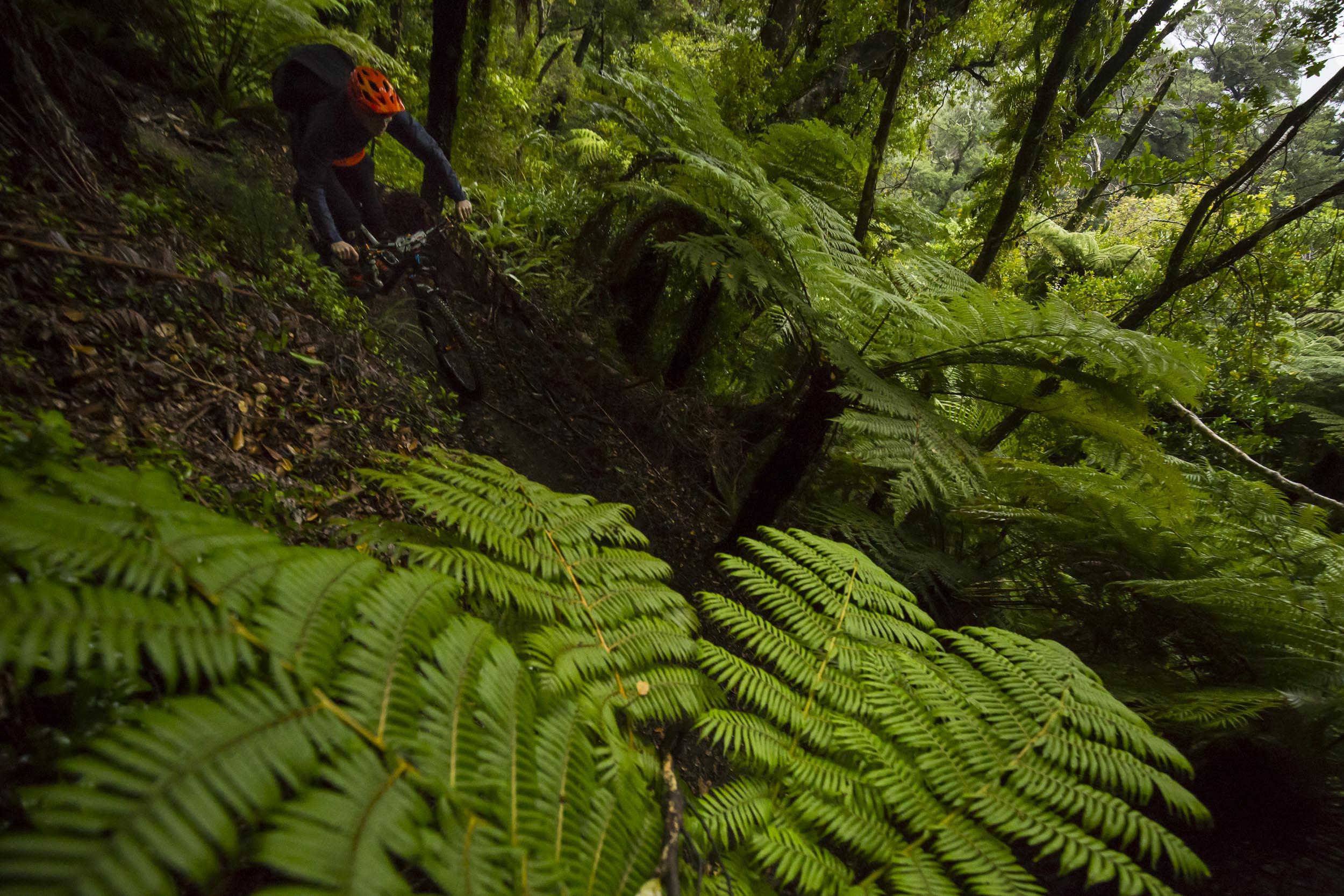 NK_NZ_Enduro_Day2-10.jpg