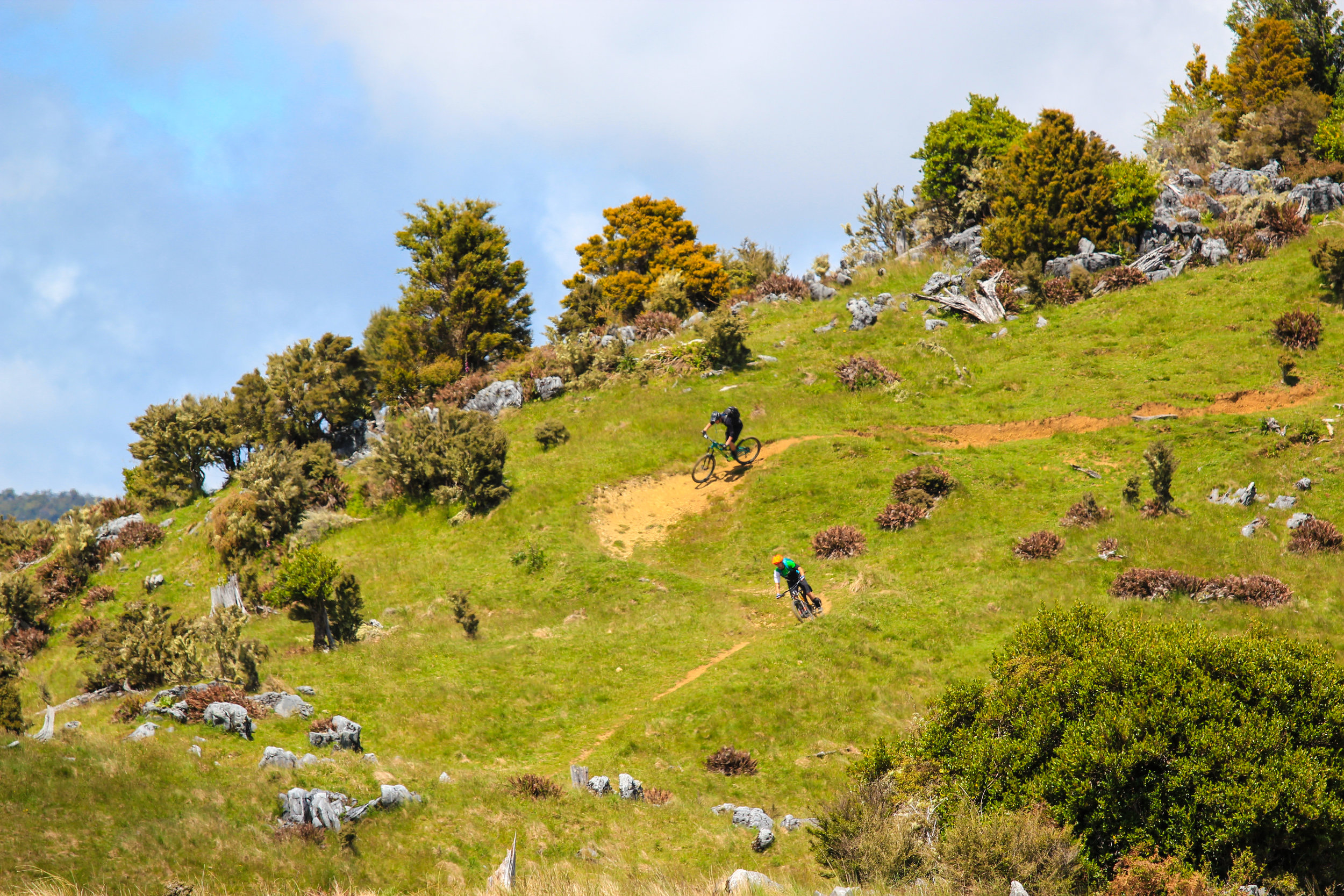 This is one of the few trails in the Abel Tasman National Park