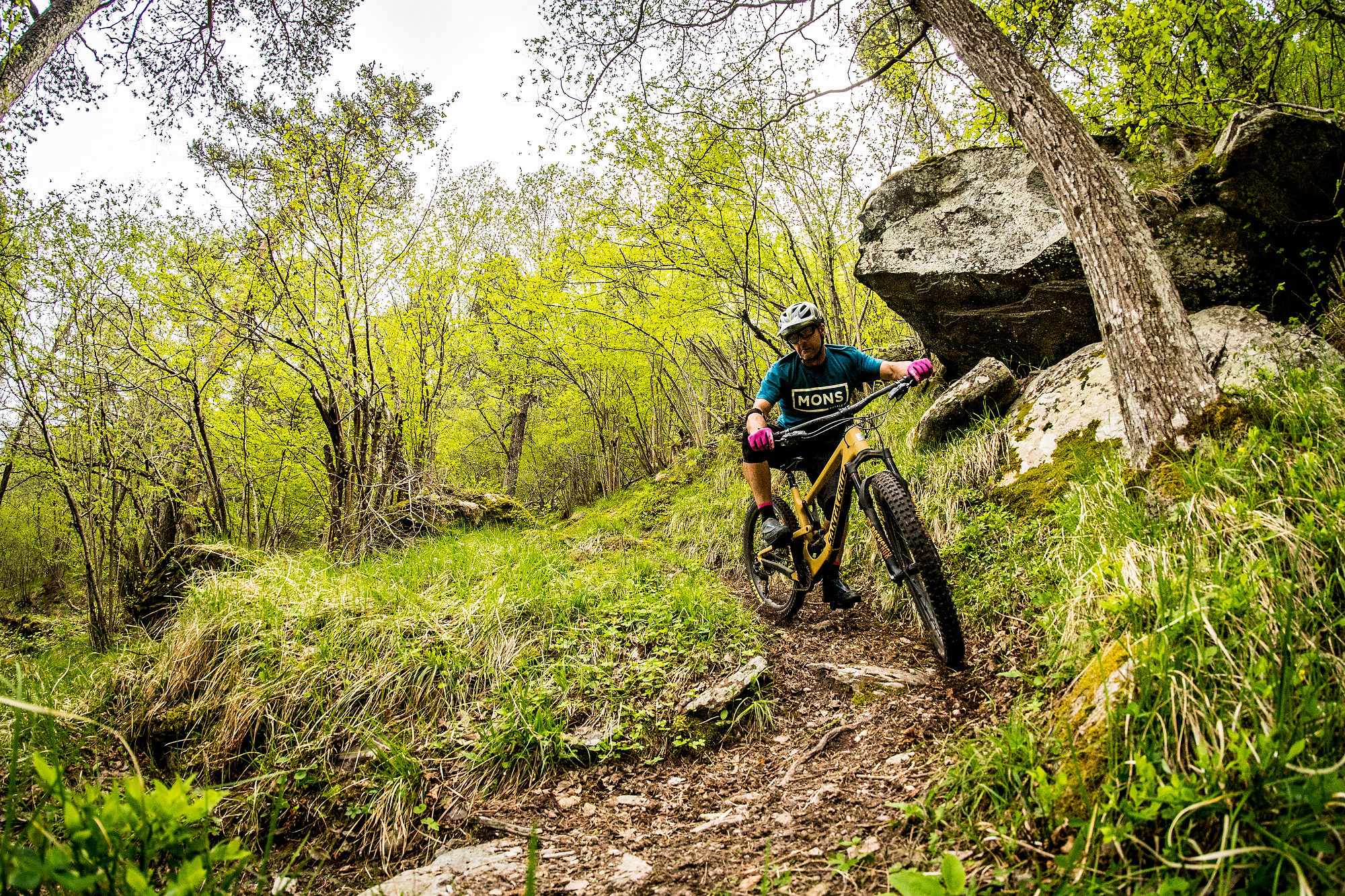 Switchbacks and rock drops for hours and hours. Perfect for a trailbike on steroids.                                         photo: Sven Martin