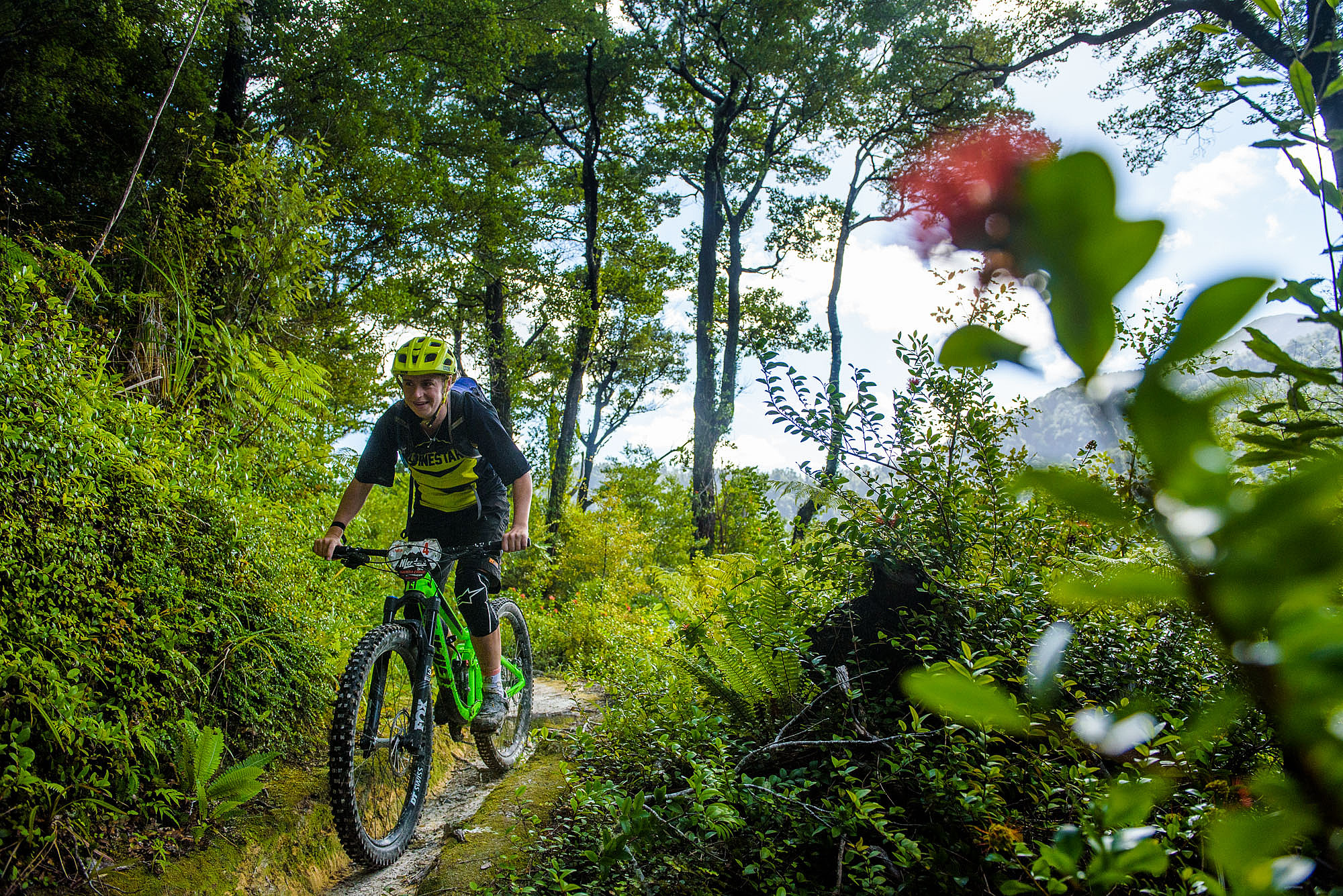 Riders made their way between the Rata flowers, Lancewoods and Black Beech trees.