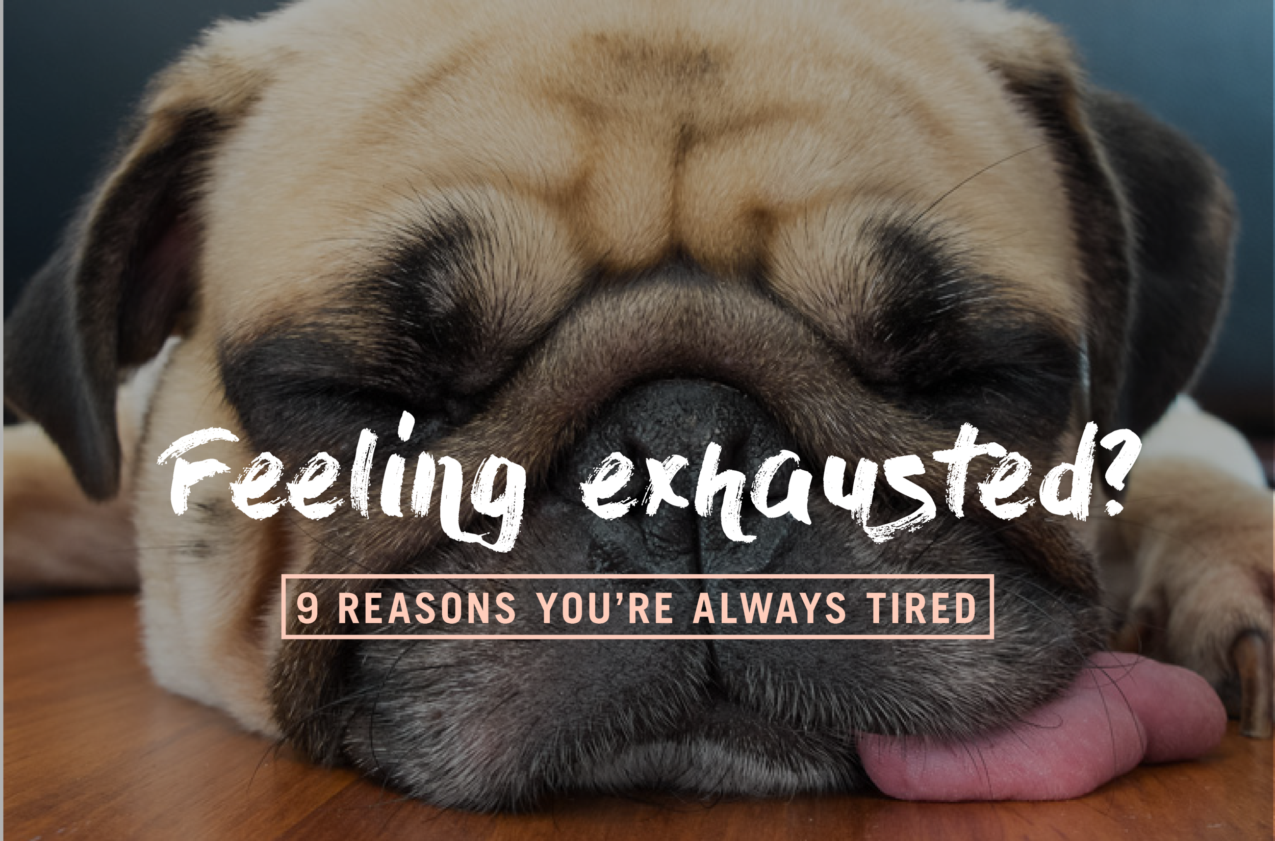 9 reasons you're always tired.png