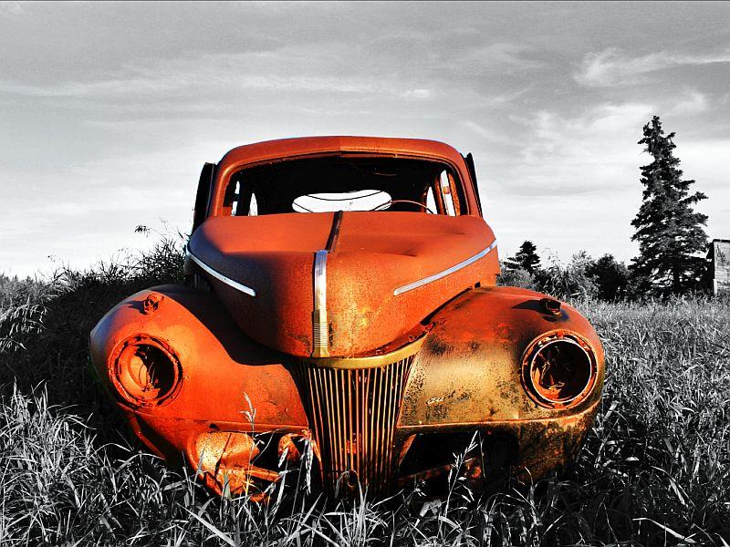 Rusty by Kody K.