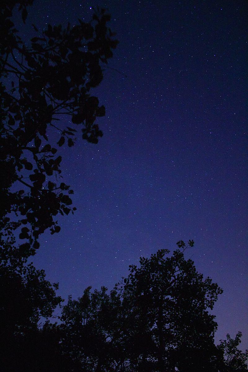 Sylvan Lake Nights by Kody K.