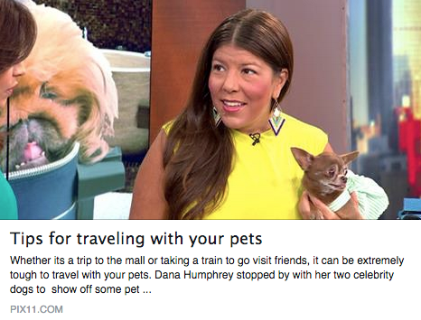 PIX11 Pet Travel Segment