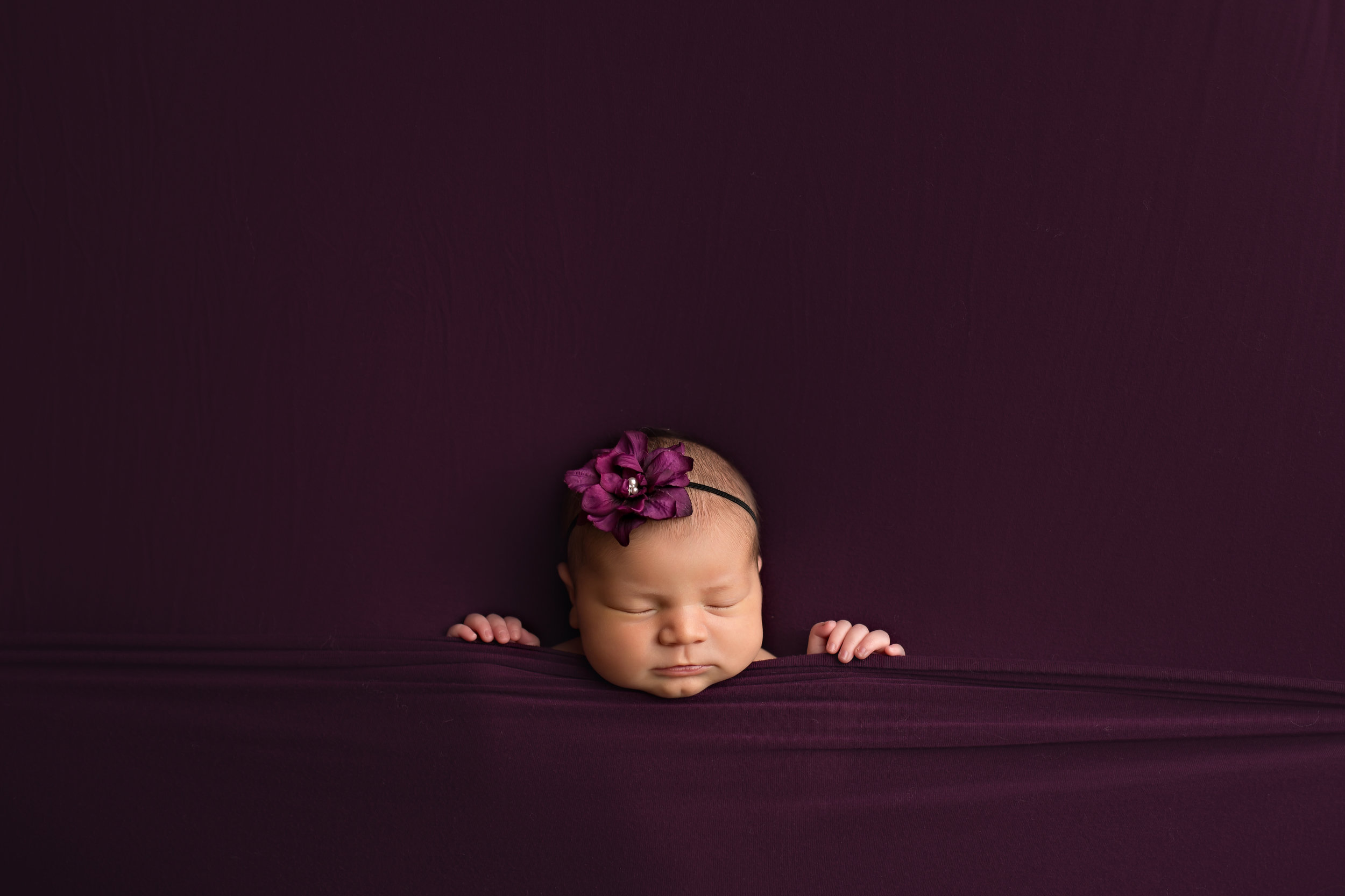 newborn photography in the Twin Cities