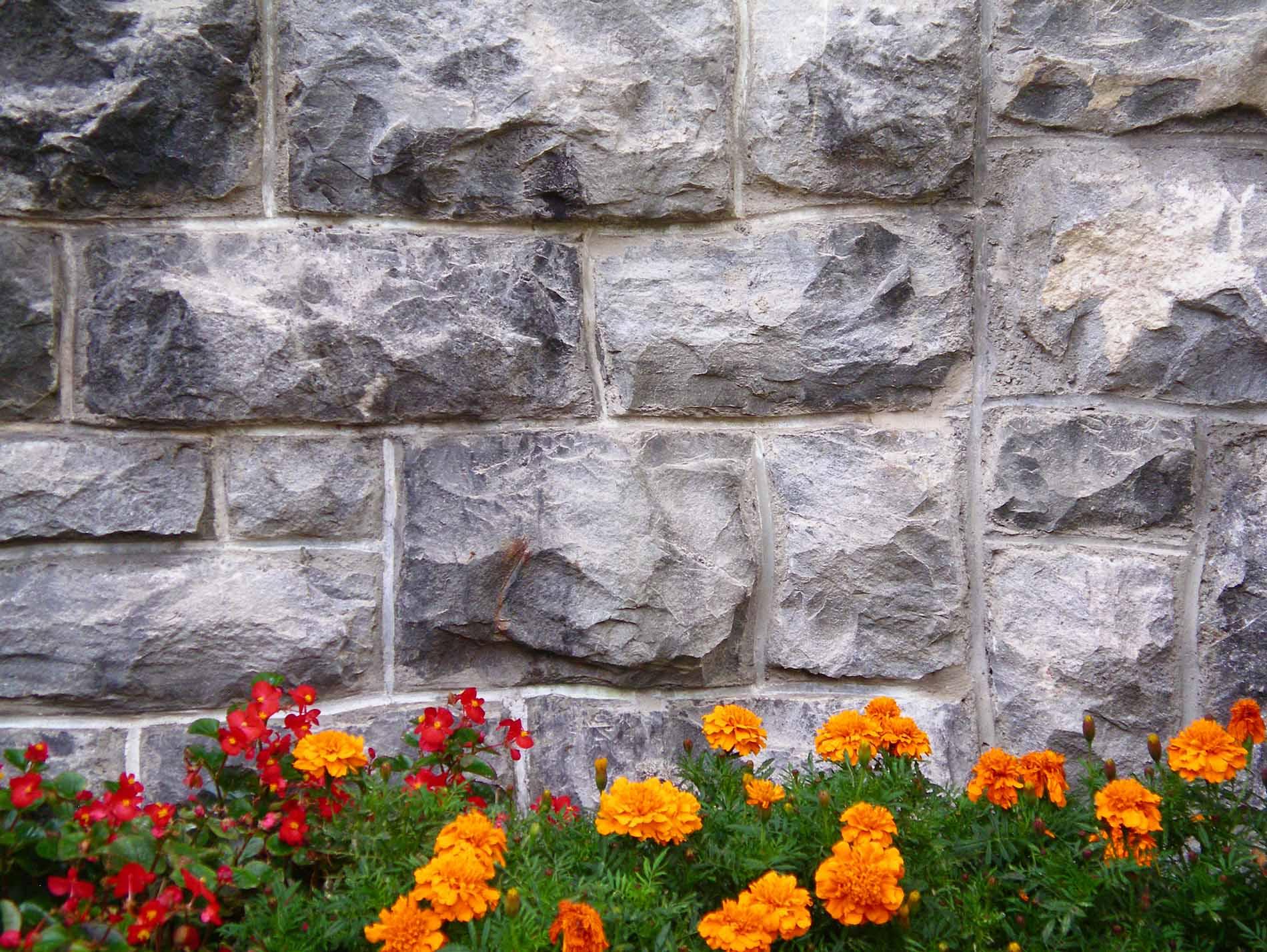 Mauersanierung