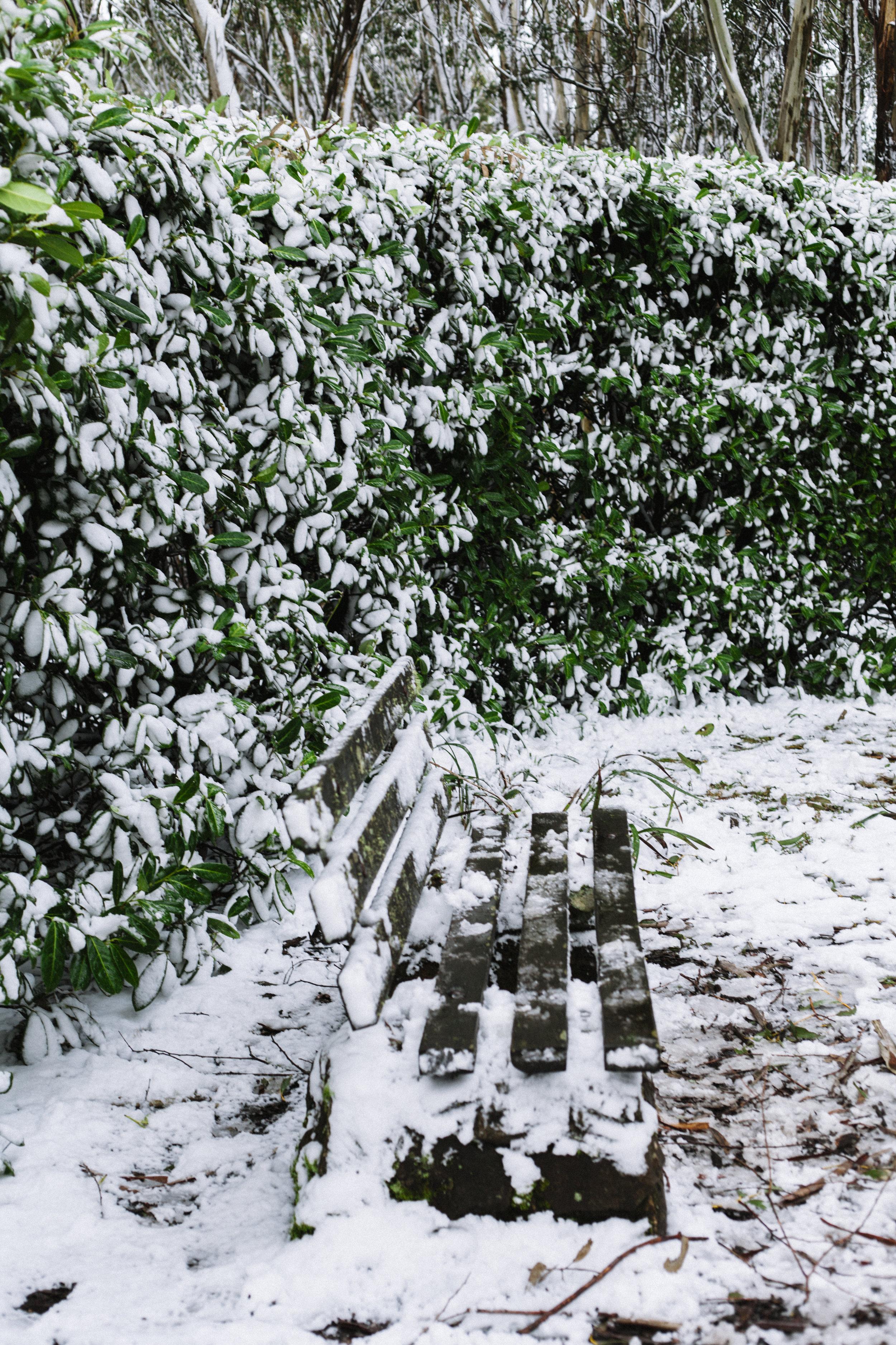 MountMacedon_6896.jpg