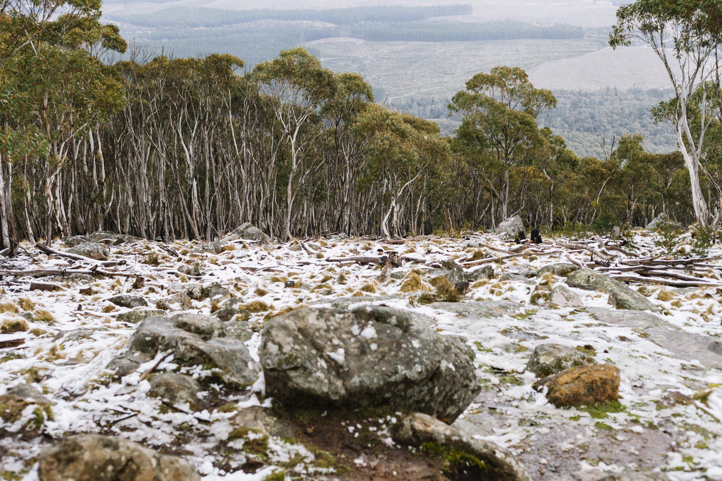 MountMacedon_6940.jpg