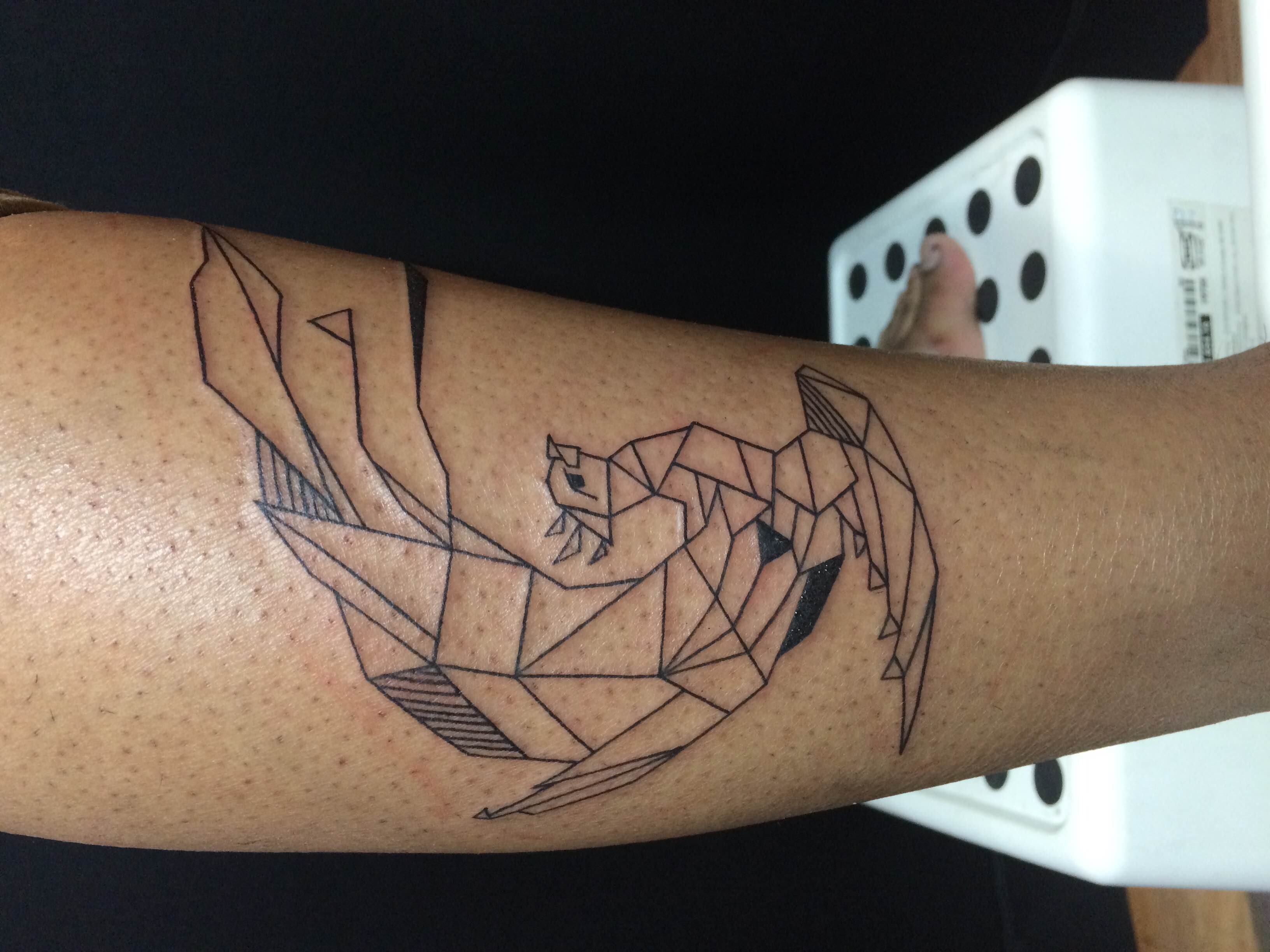 geometric phoenix.JPG