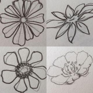 Flower design doodles