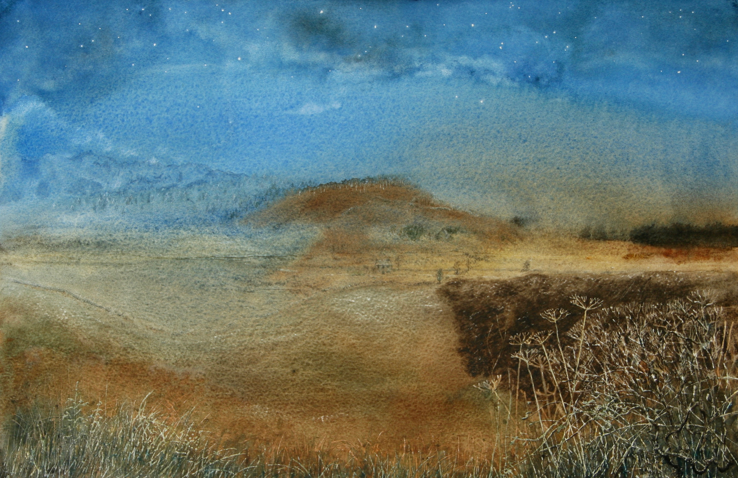 """For """"Imaginary Landscape, Bright Moonlit Night"""" I knew that I wanted a round tree topped hill in the middle, the detail at the front, and starlight, but just as much I wanted to see what I could do with really wet washes of cobalt and burnt sienna, because of the way they both granulate as they dry."""