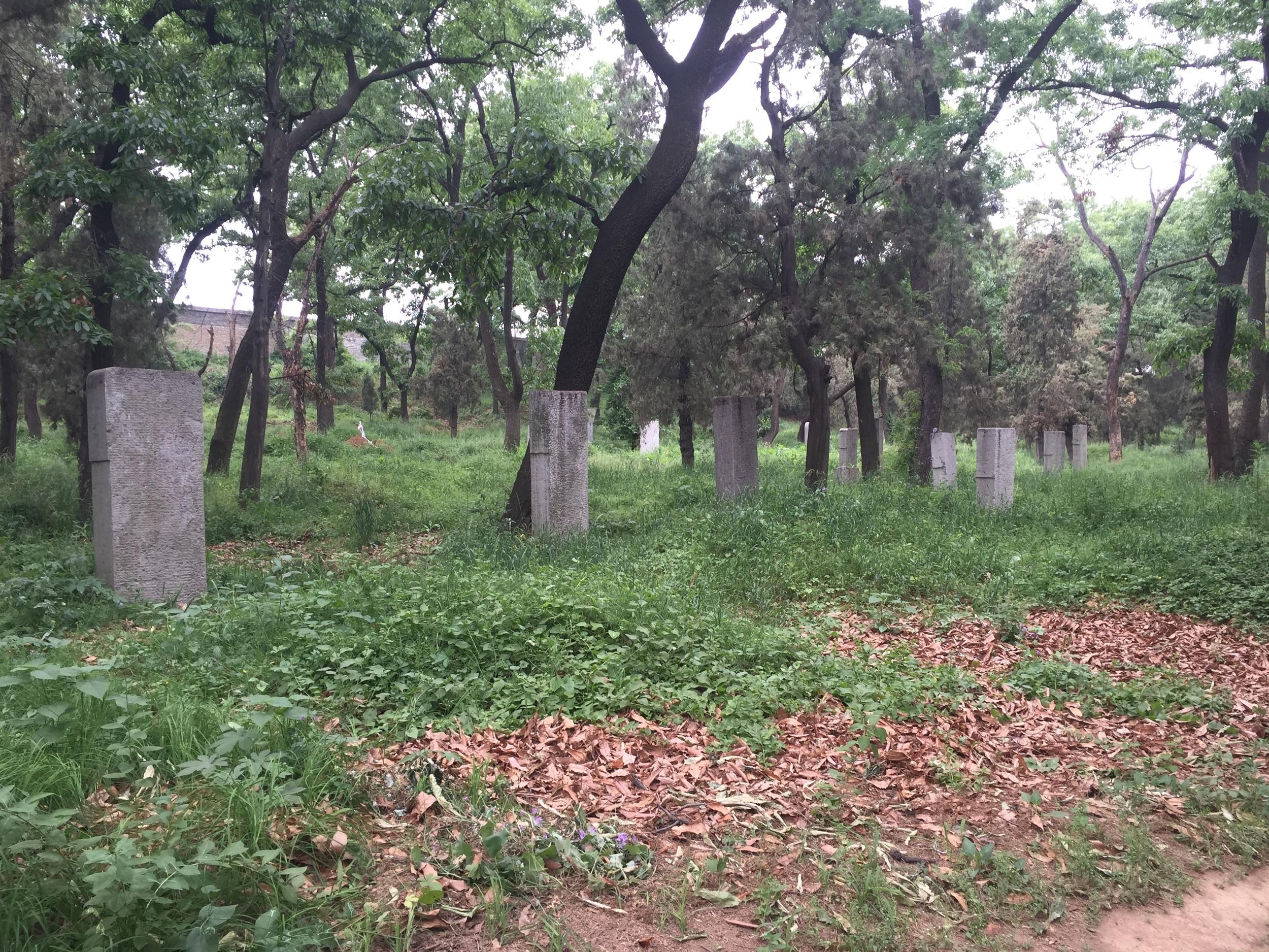 Huge cemetery.