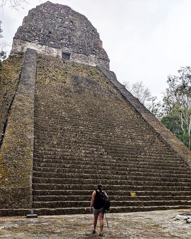 ✔️ Visit one of the most famous attractions in Guatemala⁣ ✔️ Sweat buckets⁣ ✔️ Feel like Indiana Jones ⁣ ✔️ Feel like Steve Irwin ⁣ ✔️ Get real dang impressed by the Mayans ⁣ ________________________________⁣ #tikal #peten #guatemala #mayanruins #latinamerica #centralamerica #sheisnotlost #wanderwomeninc #wanderwomen #wanderwoman #IndianaJonea #jungle #wander #wanderlust #travel