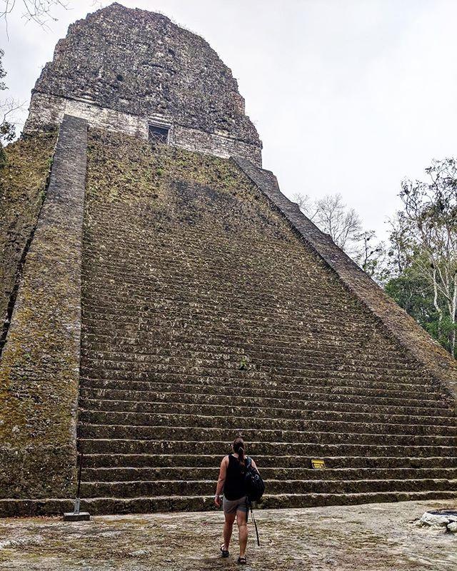 ✔️ Visit one of the most famous attractions in Guatemala ✔️ Sweat buckets ✔️ Feel like Indiana Jones  ✔️ Feel like Steve Irwin  ✔️ Get real dang impressed by the Mayans  ________________________________ #tikal #peten #guatemala #mayanruins #latinamerica #centralamerica #sheisnotlost #wanderwomeninc #wanderwomen #wanderwoman #IndianaJonea #jungle #wander #wanderlust #travel