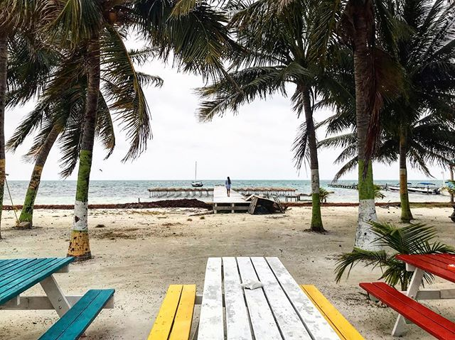 """A good traveler has no fixed plans and is not intent on arriving."" – Lao Tzu ⁣ ⁣ The motto for Caye Caulker is Go Slow. We are traveling slowly, with few plans. It's been a perfect match. ⁣ ____________________________⁣ #belize #cayecaulker #goslow #centralamerica #latinamerica #travel #wander #travelquotes"
