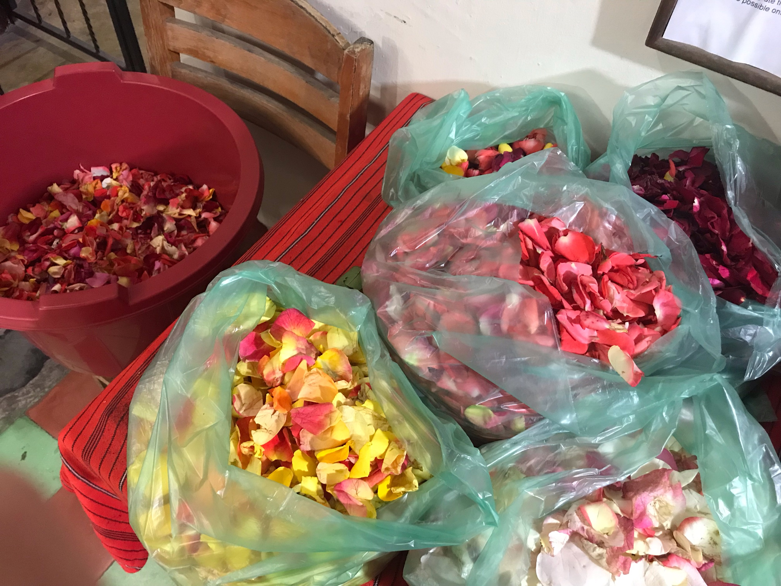 Sorting rose petals by color
