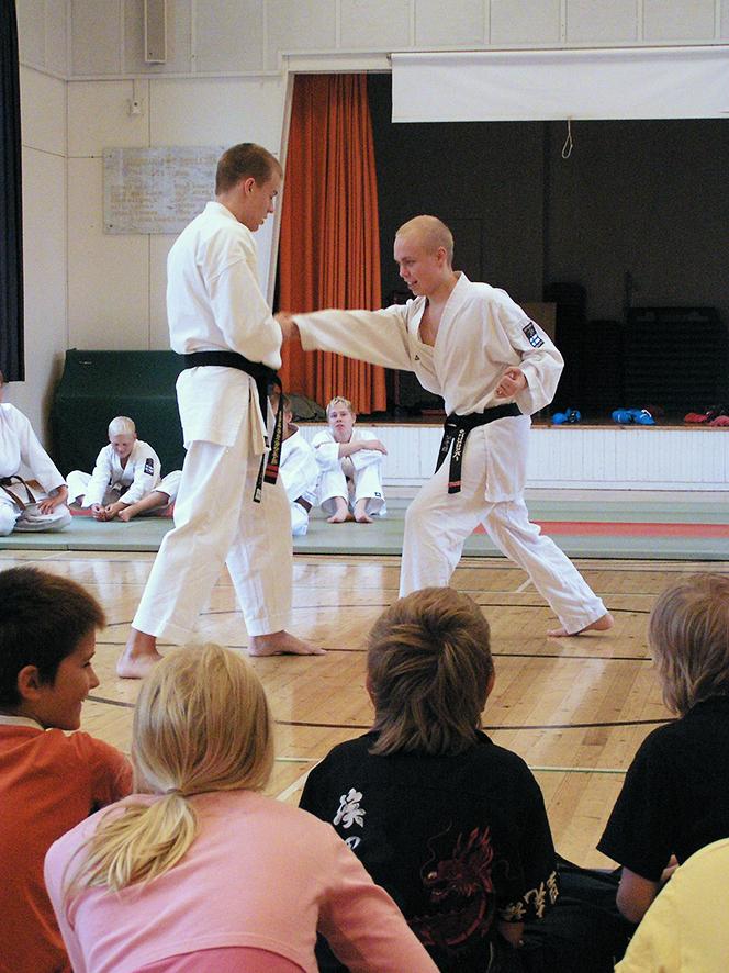Shukokai-karate-korjattu-web.jpg