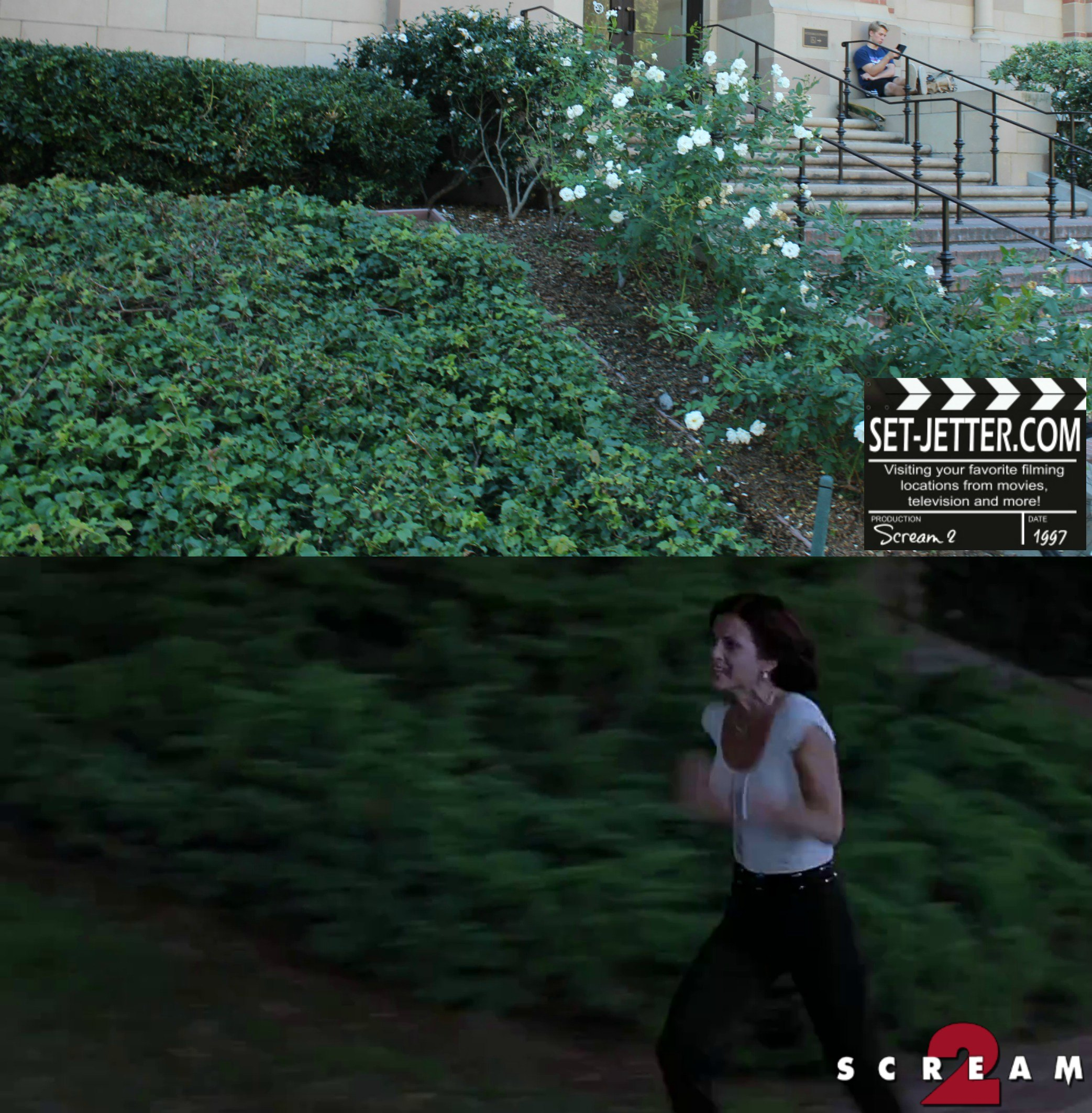 Scream 2 comparison 246.jpg