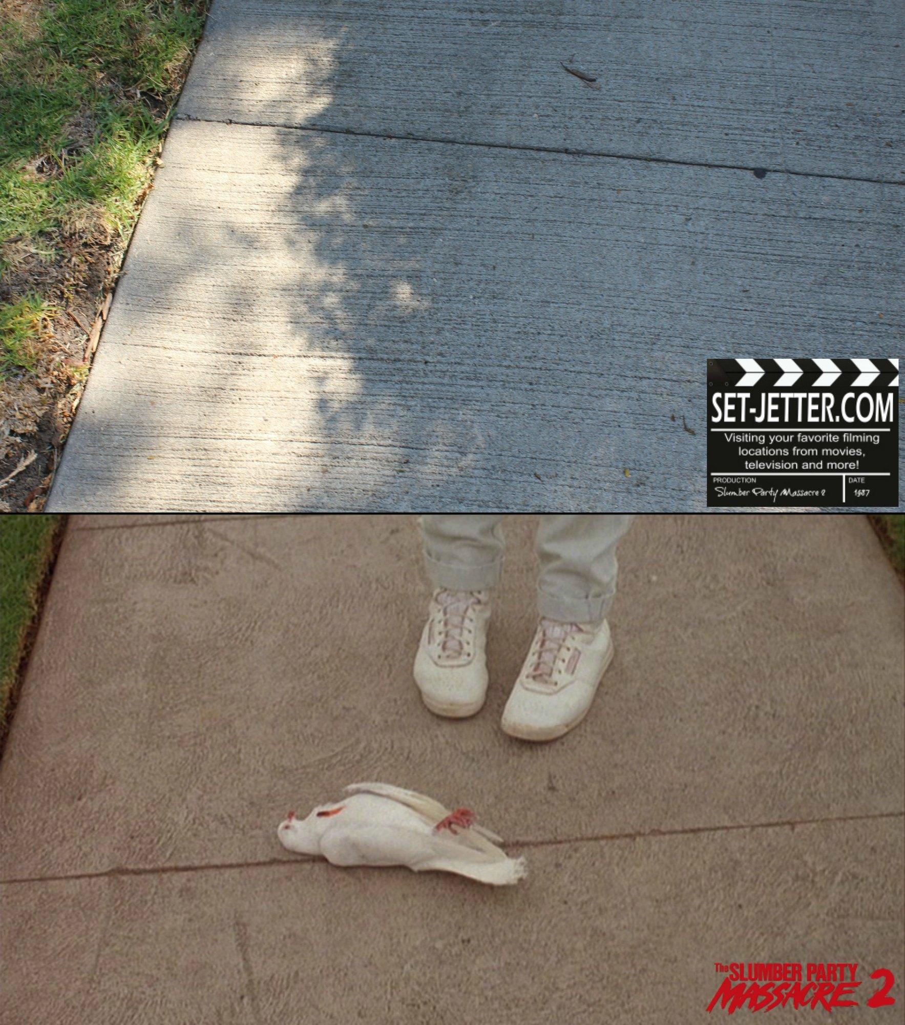 Slumber Party Massacre 2 comparison 12.jpg