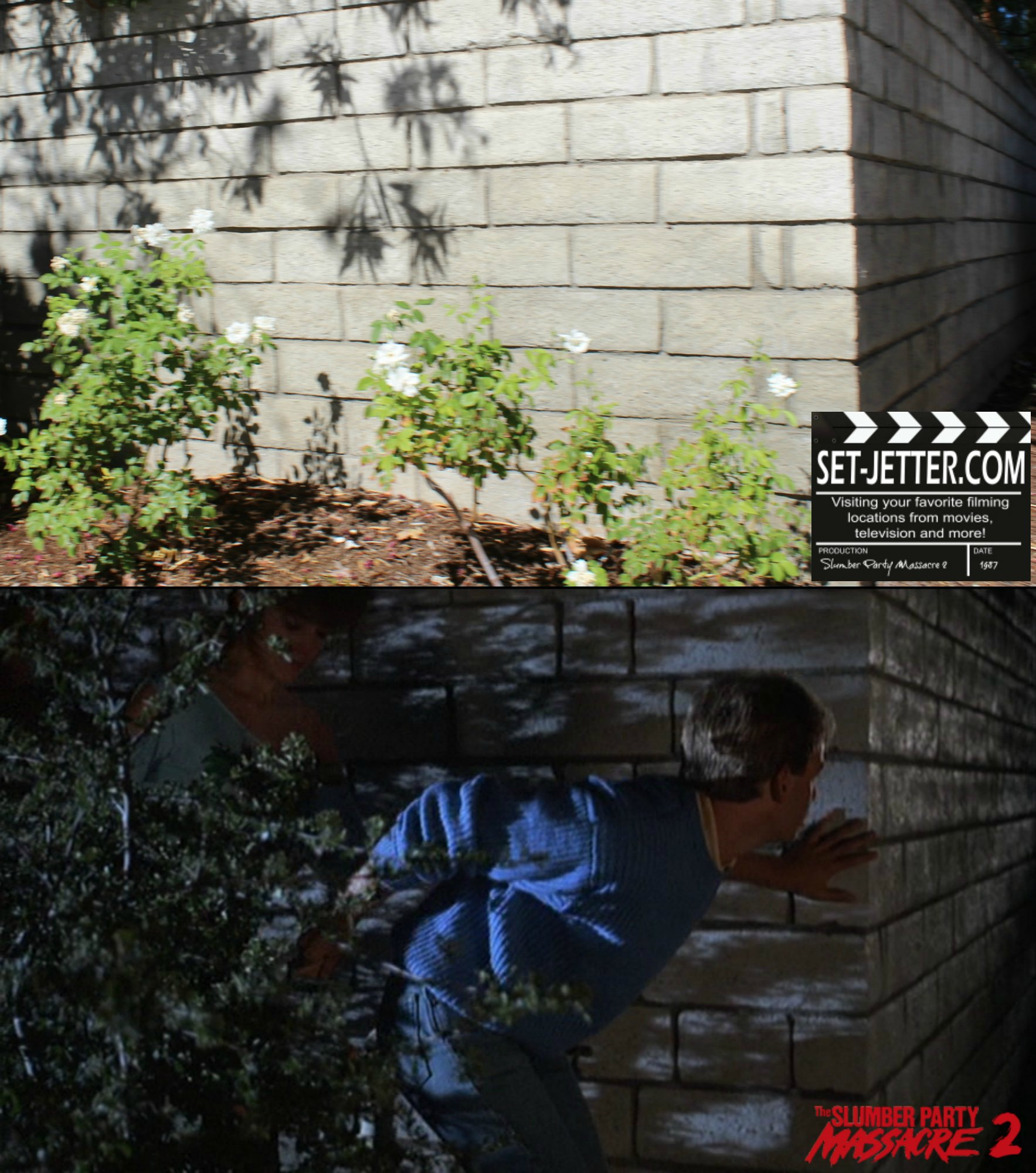 Slumber Party Massacre 2 comparison 55.jpg