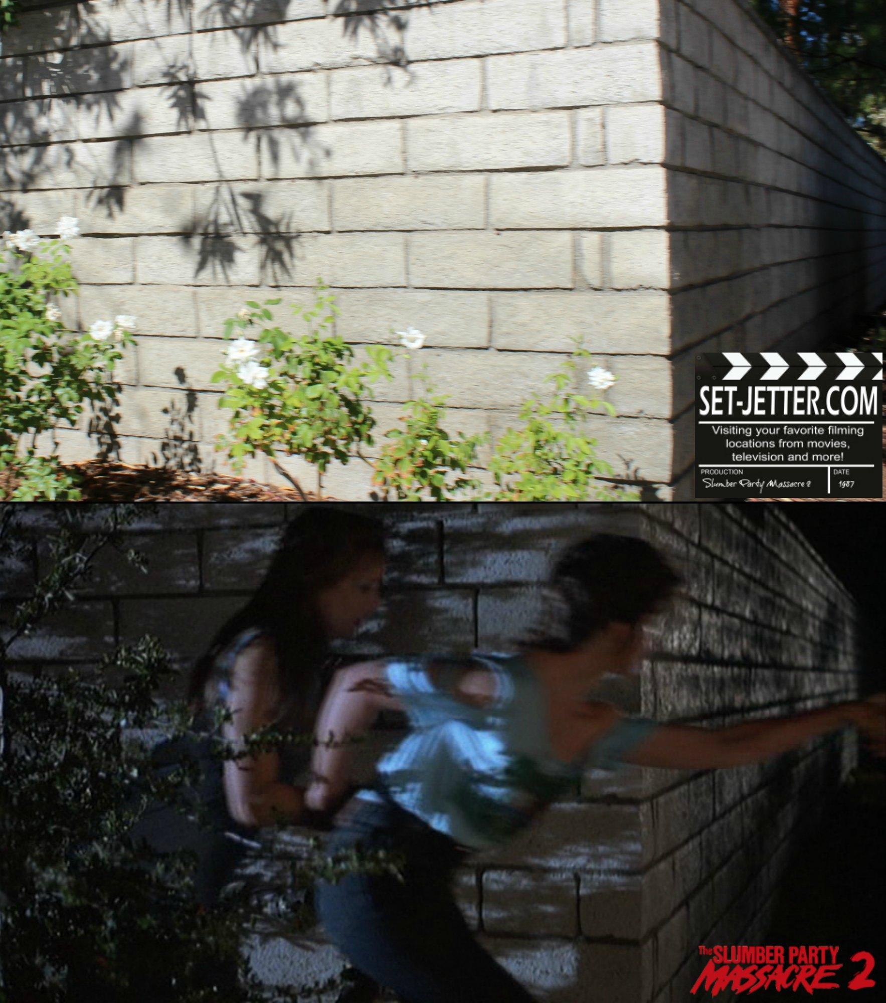 Slumber Party Massacre 2 comparison 56.jpg