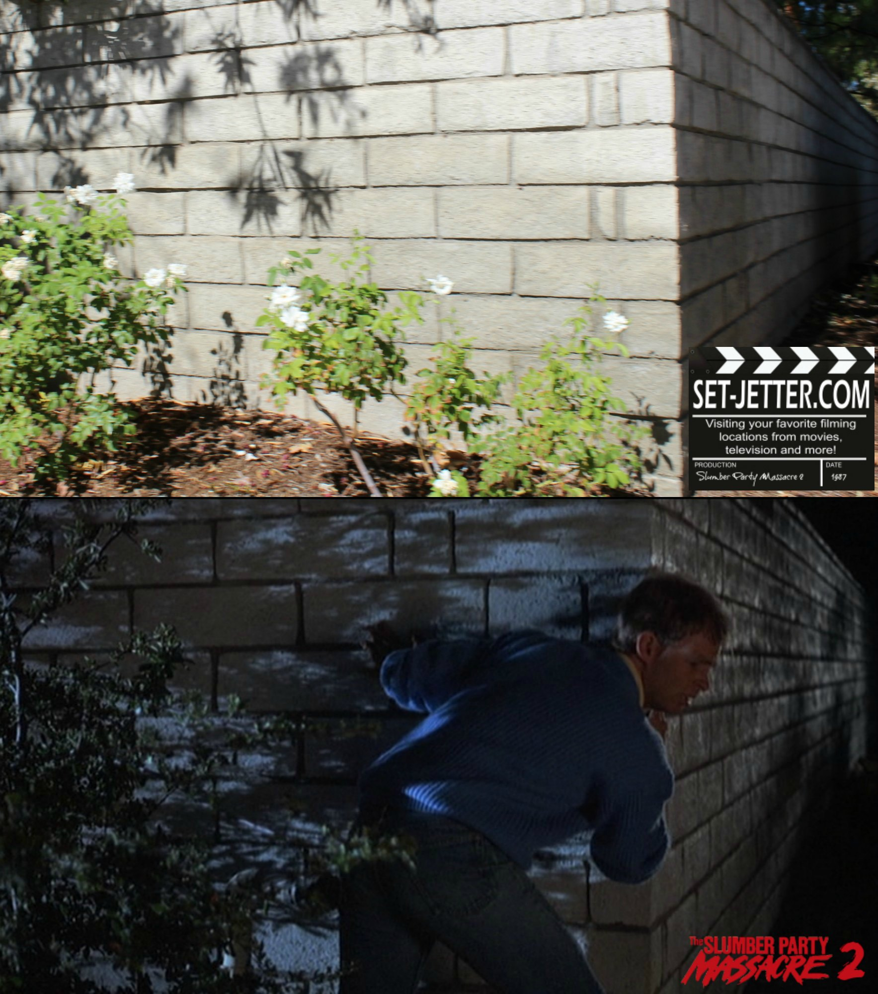 Slumber Party Massacre 2 comparison 54.jpg