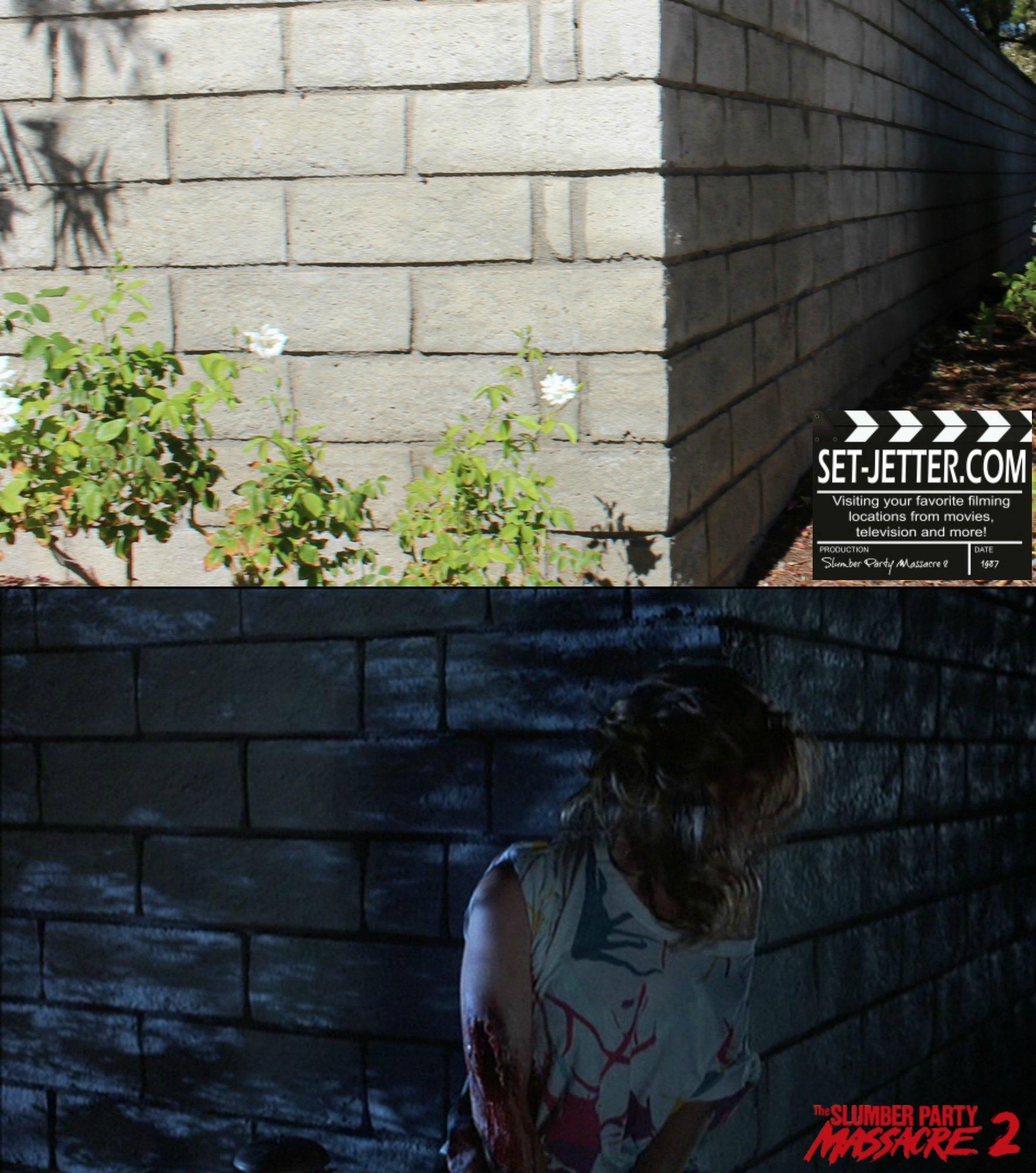 Slumber Party Massacre 2 comparison 64.jpg