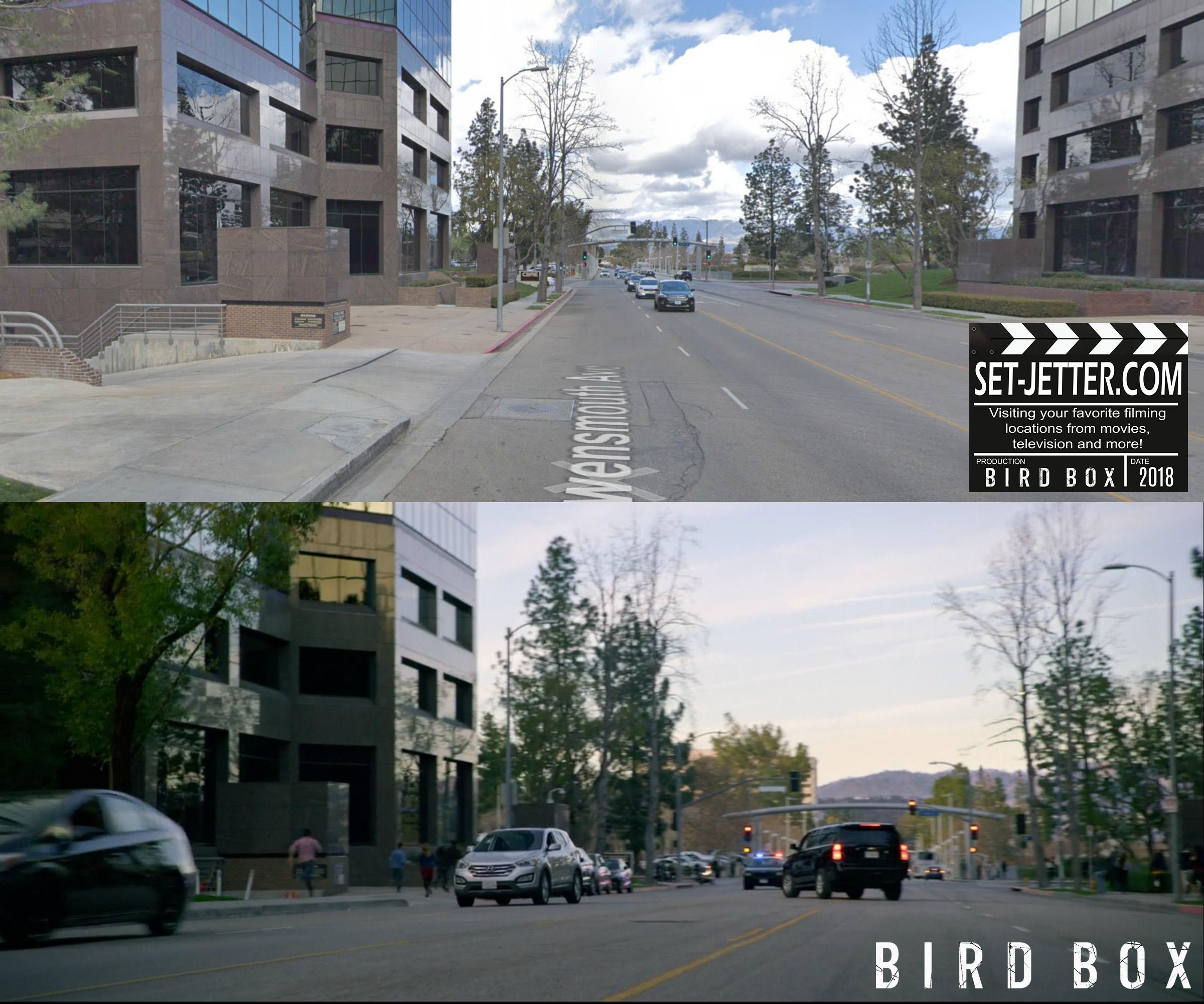 Bird Box Woodland 02.jpg