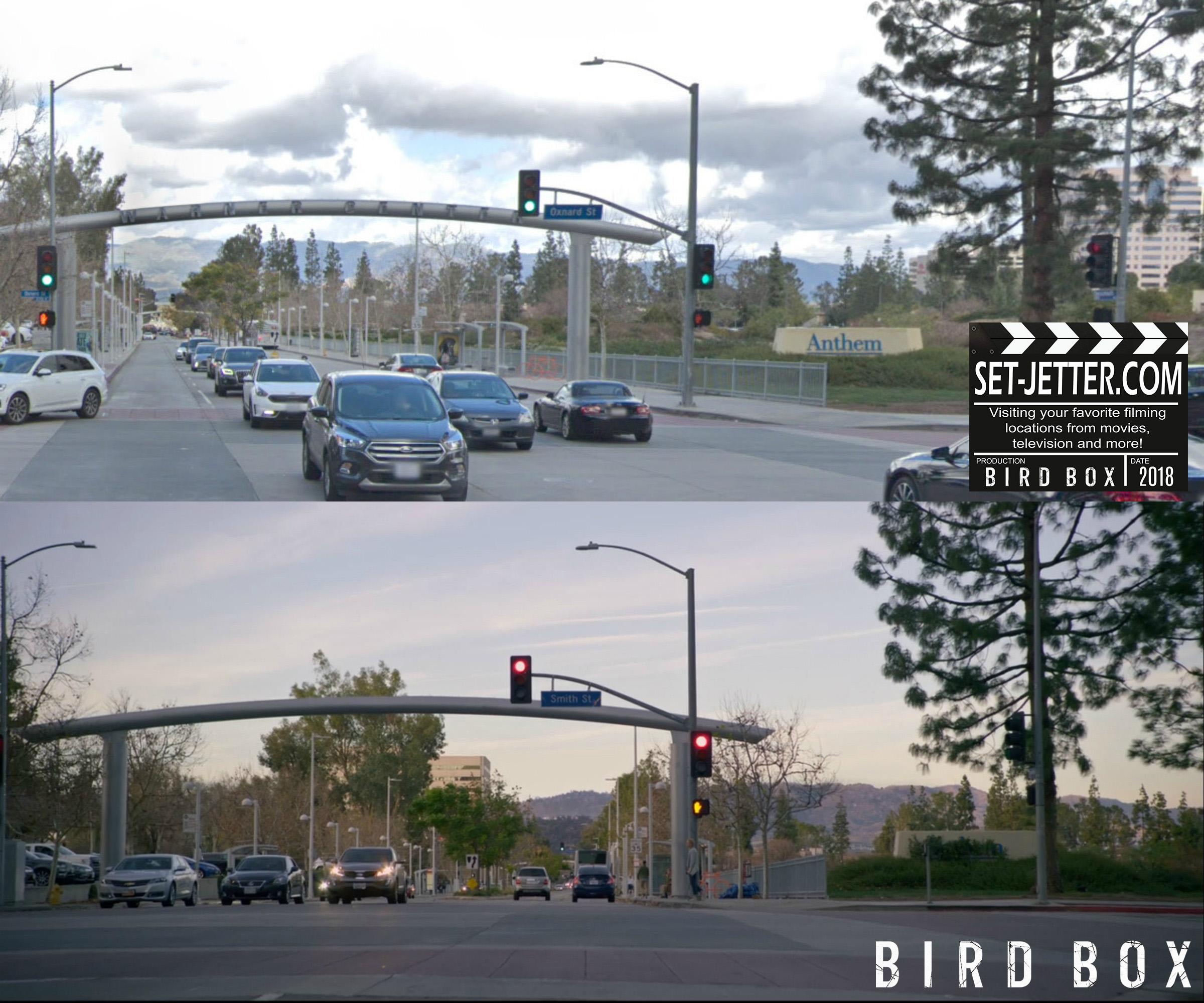 Bird Box Woodland 03.jpg
