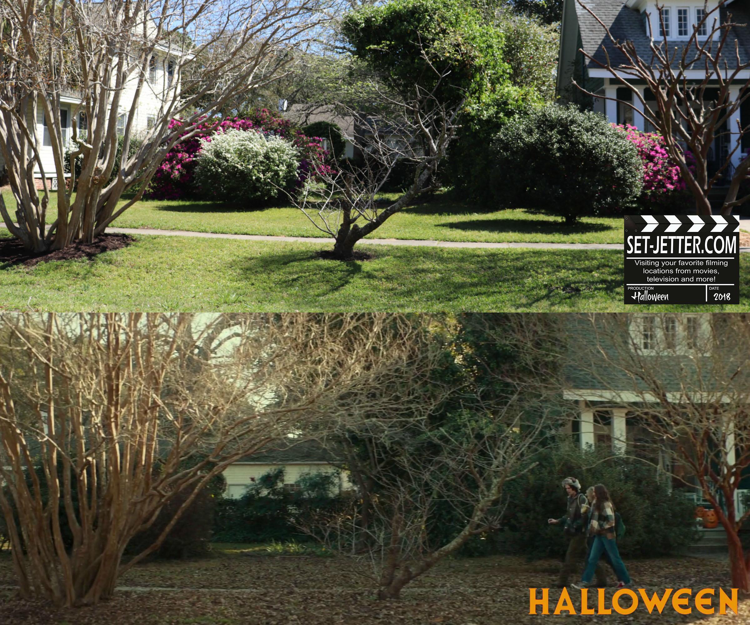 Halloween 176.jpg