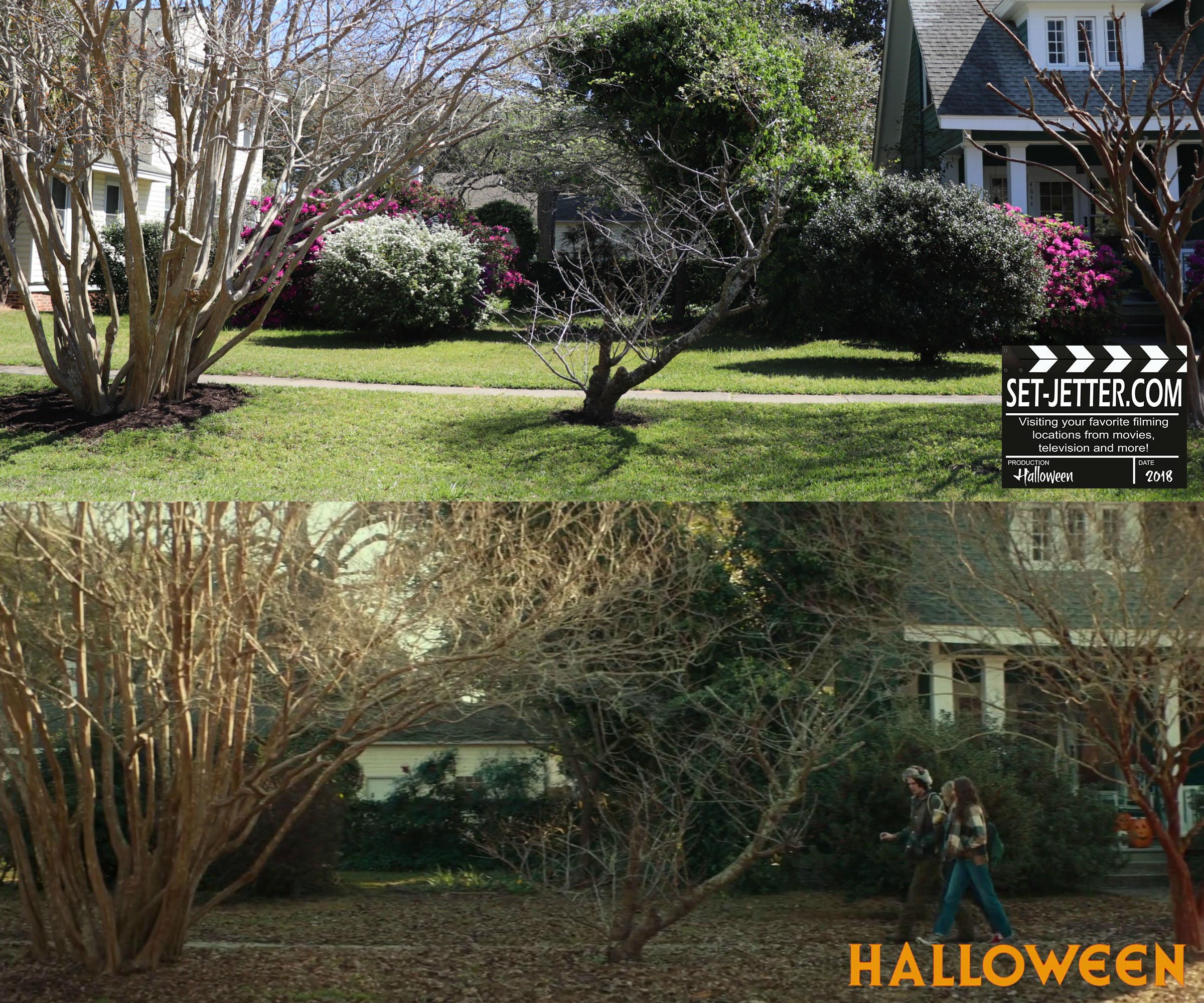 Halloween 177.jpg
