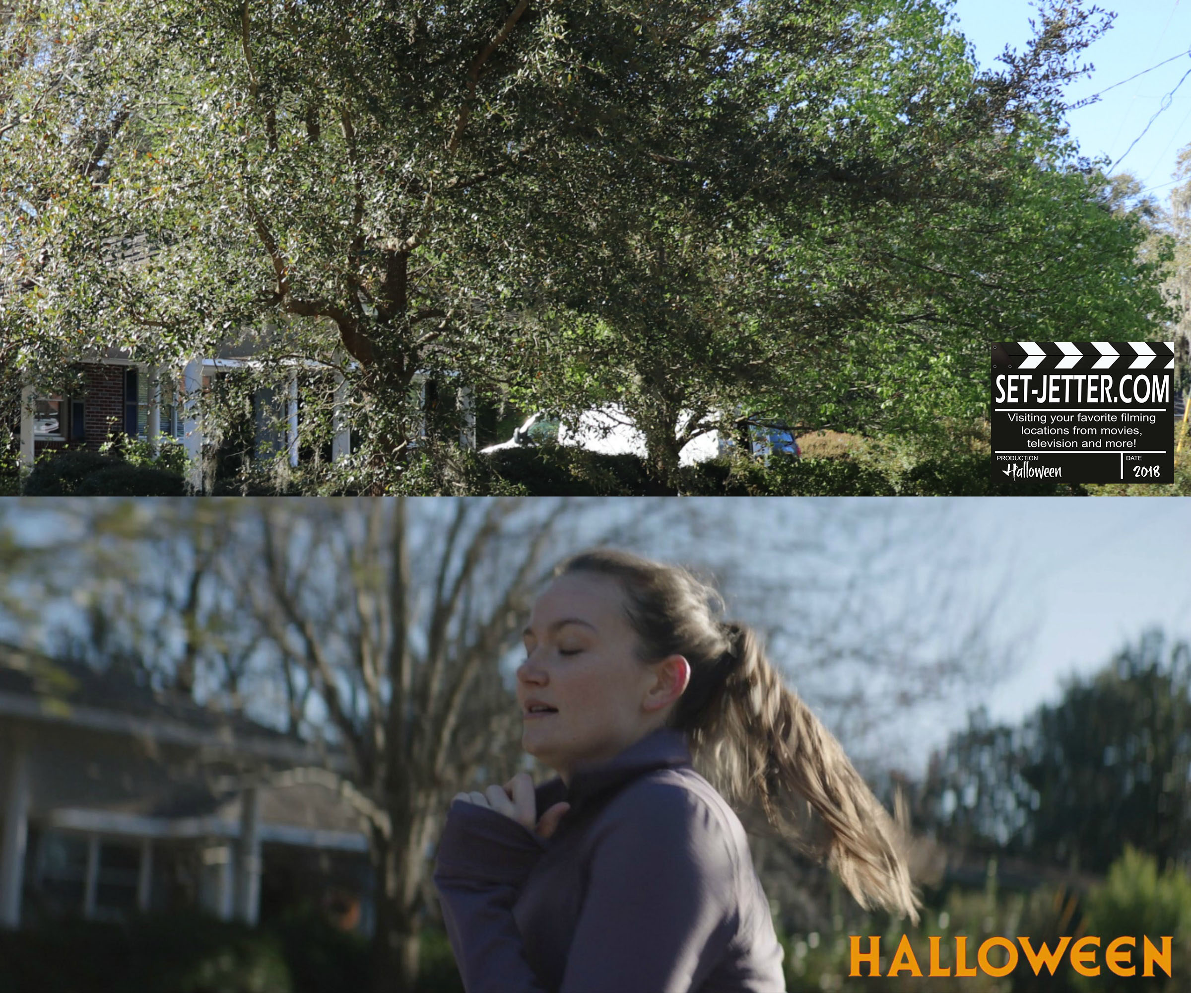 Halloween 453.jpg