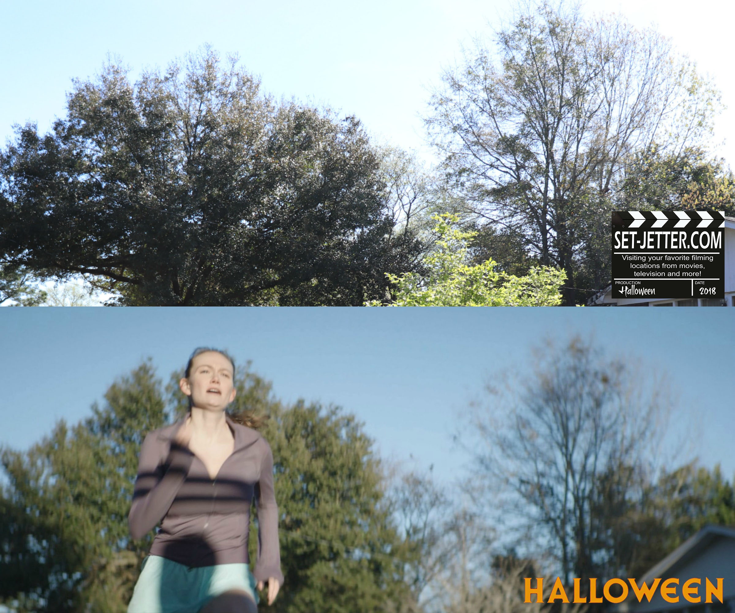 Halloween 470.jpg