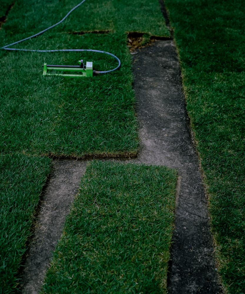 Grass over Asphalt, 2002