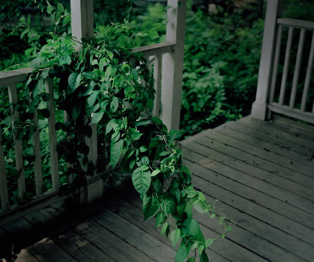 Back Porch, 2005