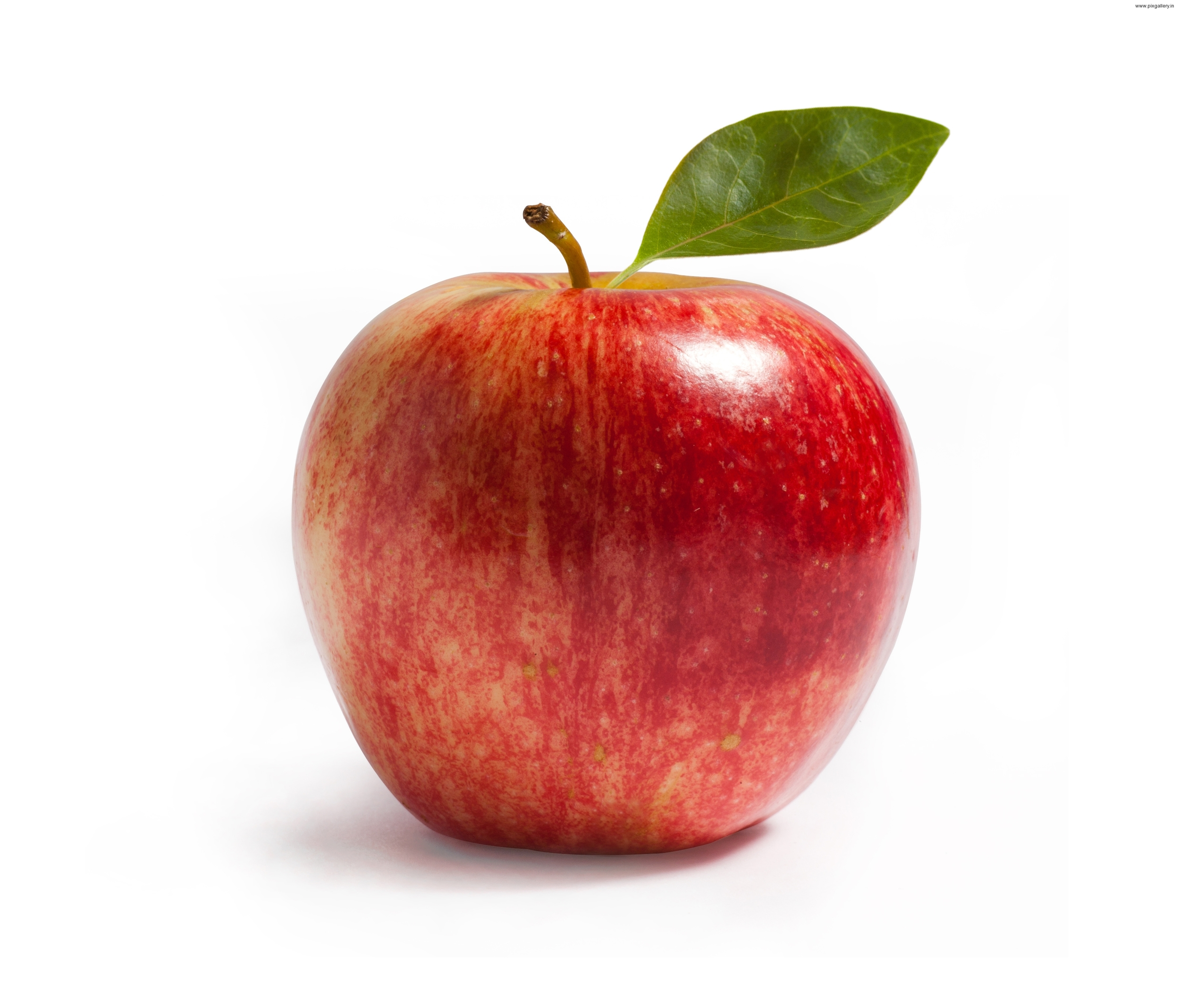 Apples are a great healthy choice for a snack!
