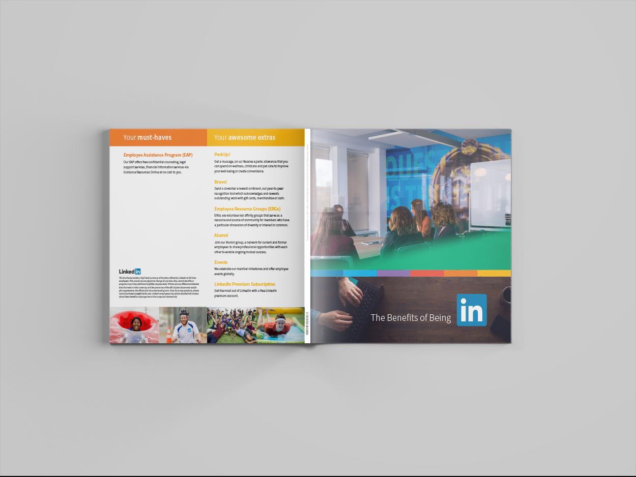 Mockup 2: Bi-fold booklet with accompanying insert.