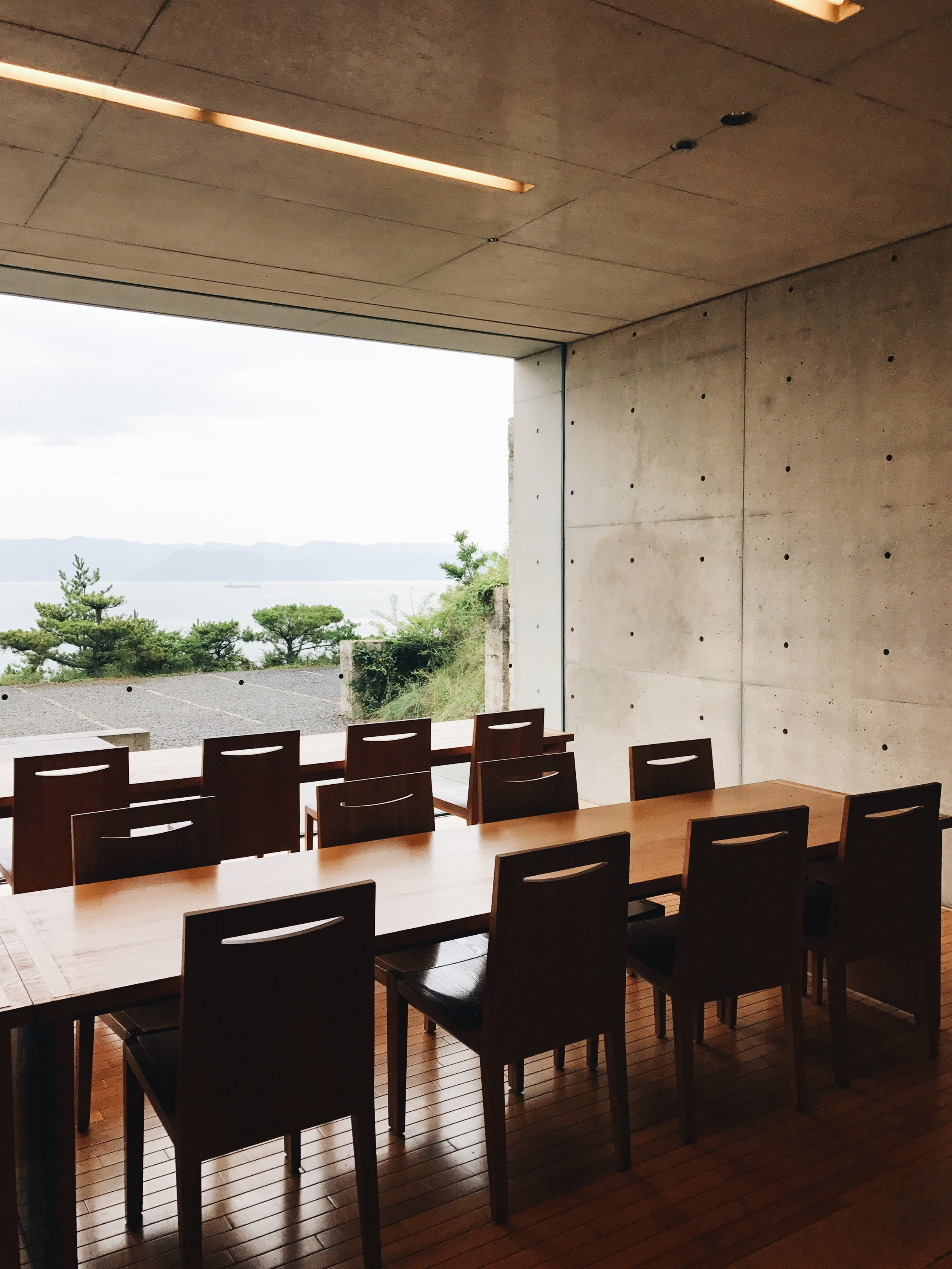 The beautiful Chichu Museum cafe!