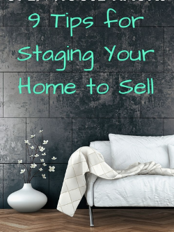 Staging Strategy e-Book $21.99