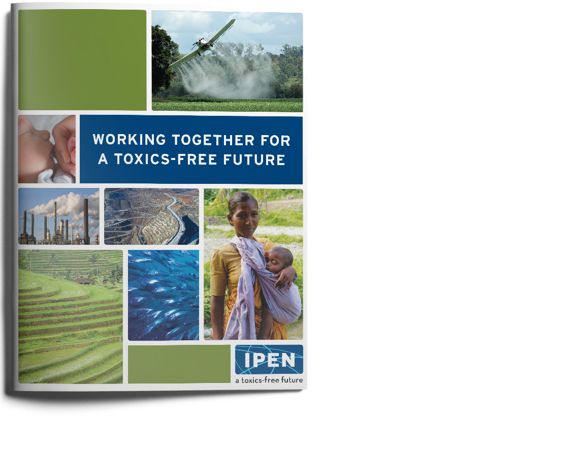 ipen-brochure-cover_white.jpg