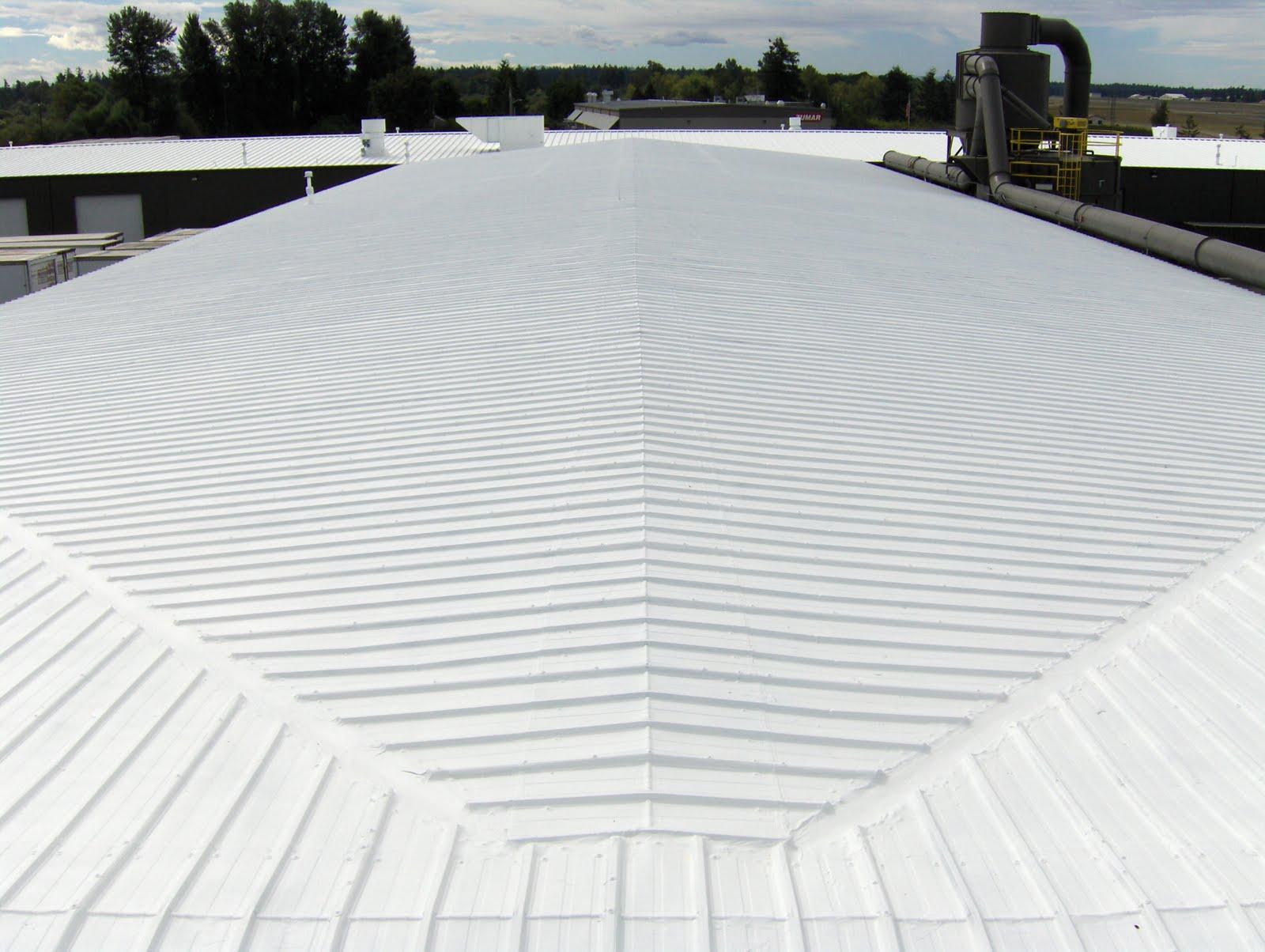 SRC Roof.jpg