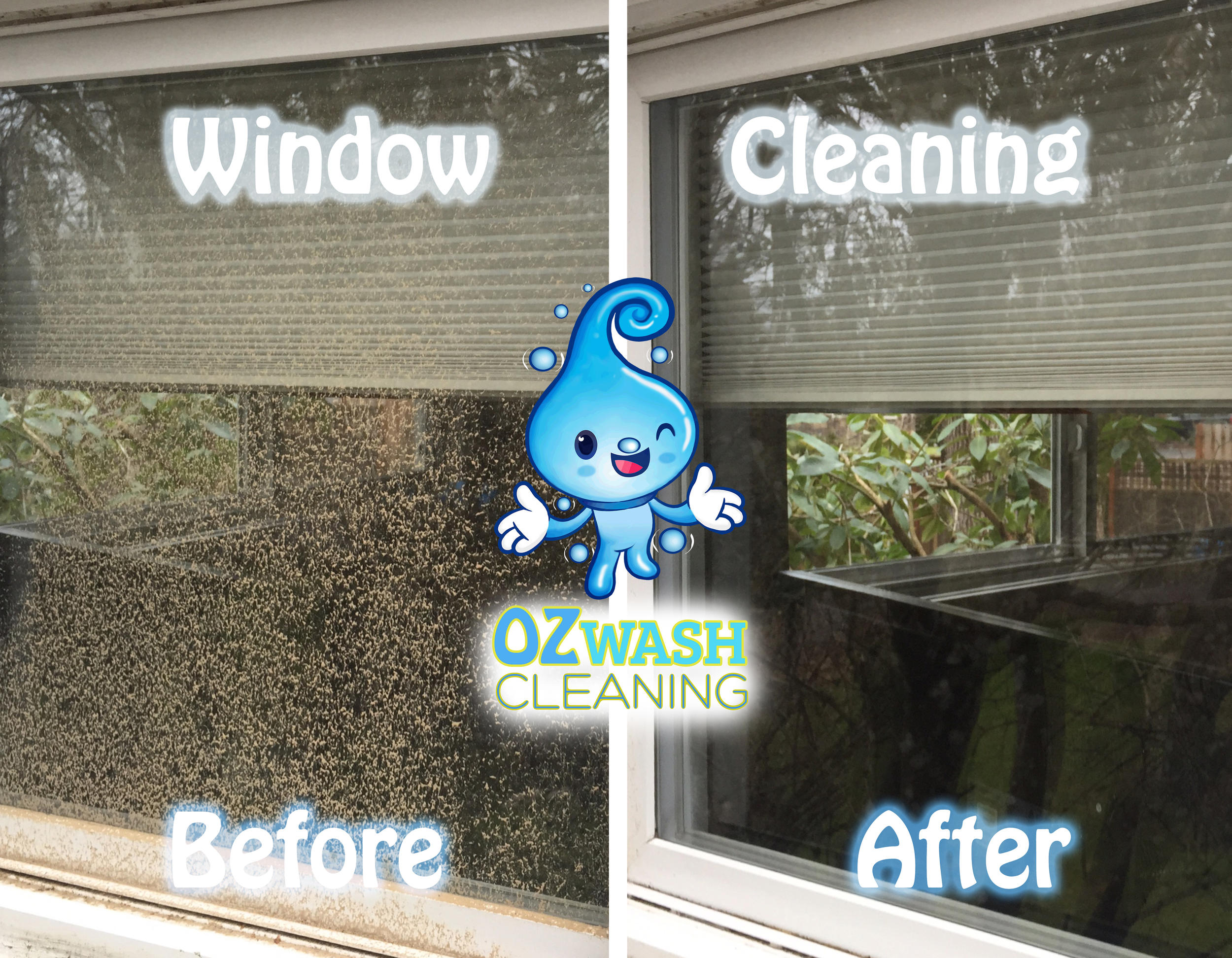 windowcleaning1.jpg