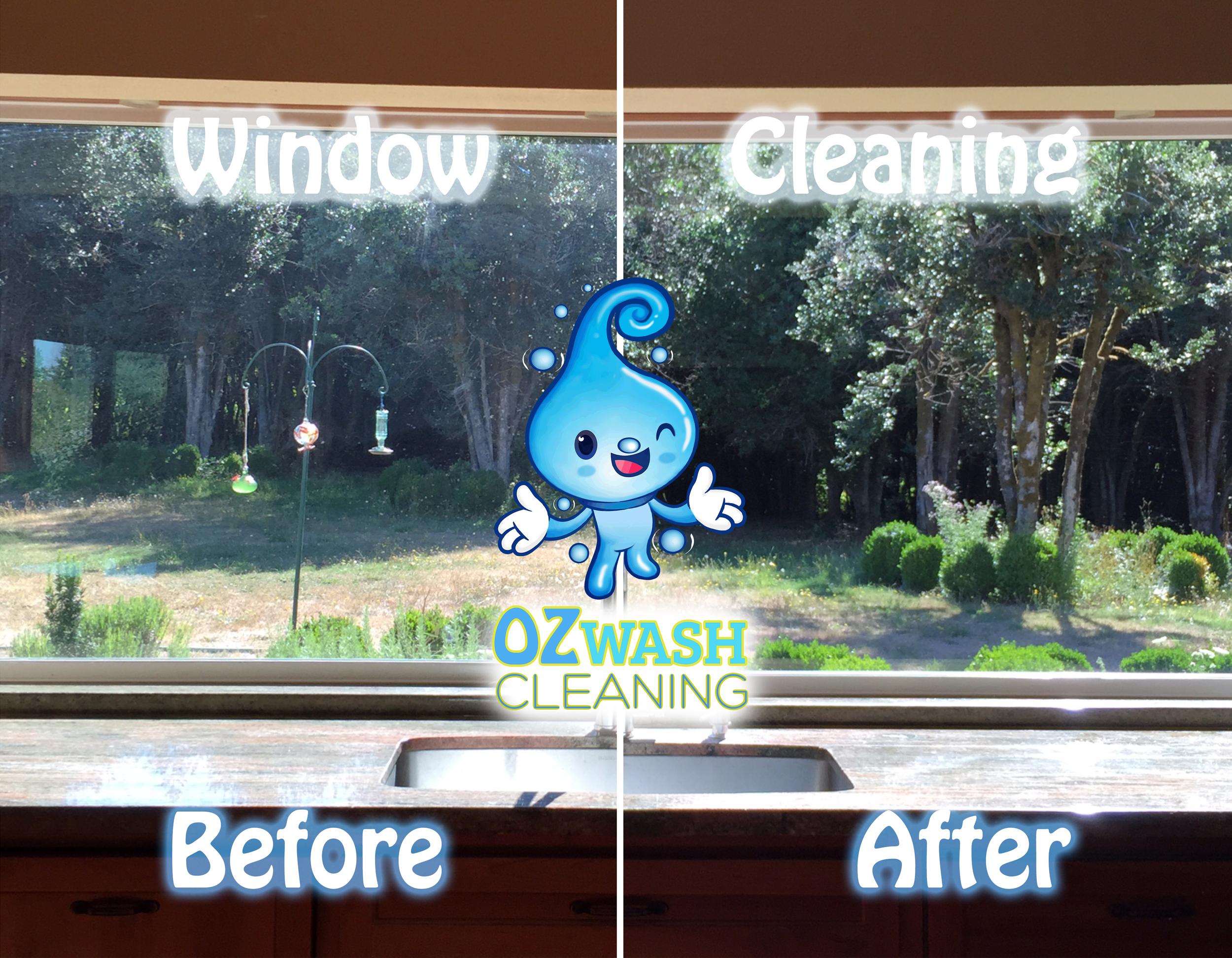windowcleaning2.jpg